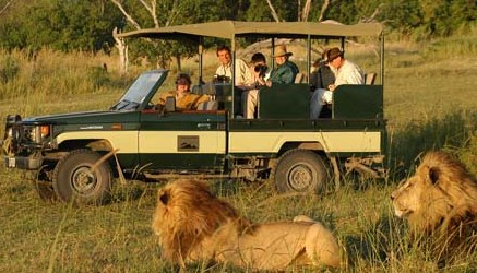 parti per un safari in kenya