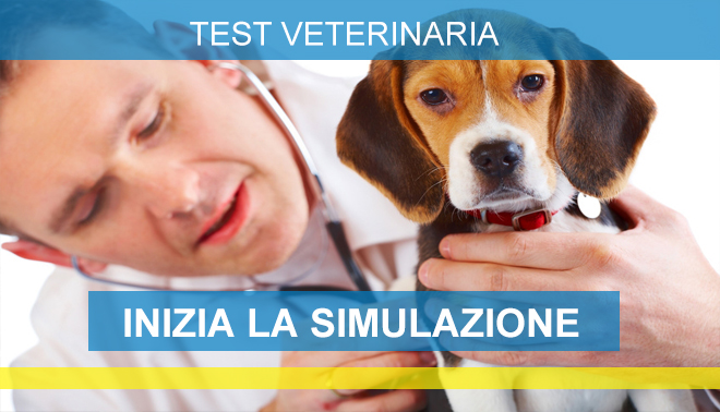 Software simulazione test medicina 2016 unbound for Simulazione medicina