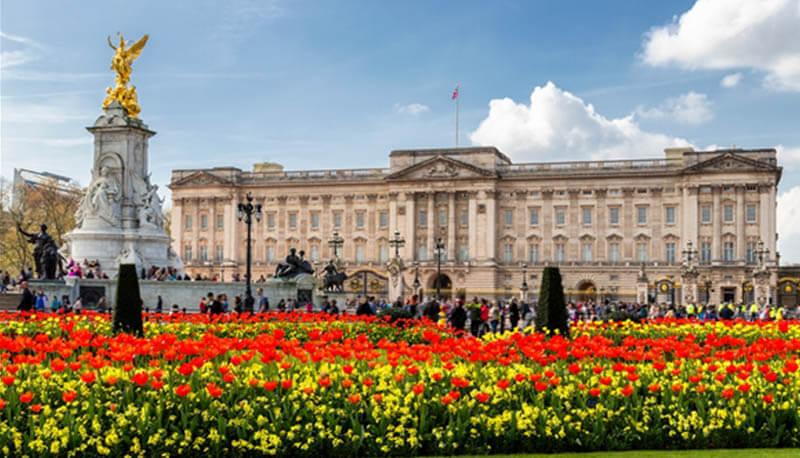 buckingham palace ricerca sul palazzo reale inglese