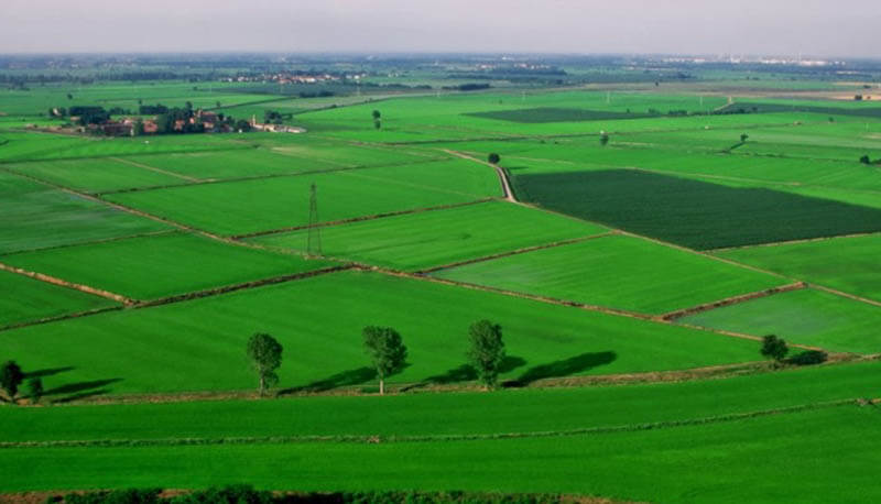 Pianura Padana Ricerca Di Geografia Sulla Pianura