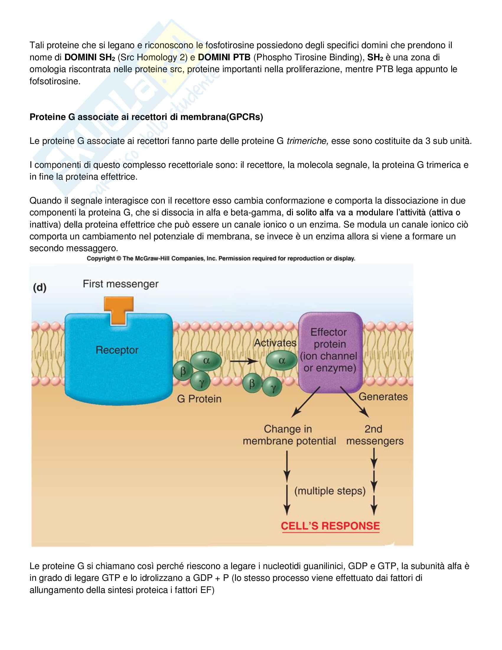 Biochimica per le Biotecnologie Pag. 11