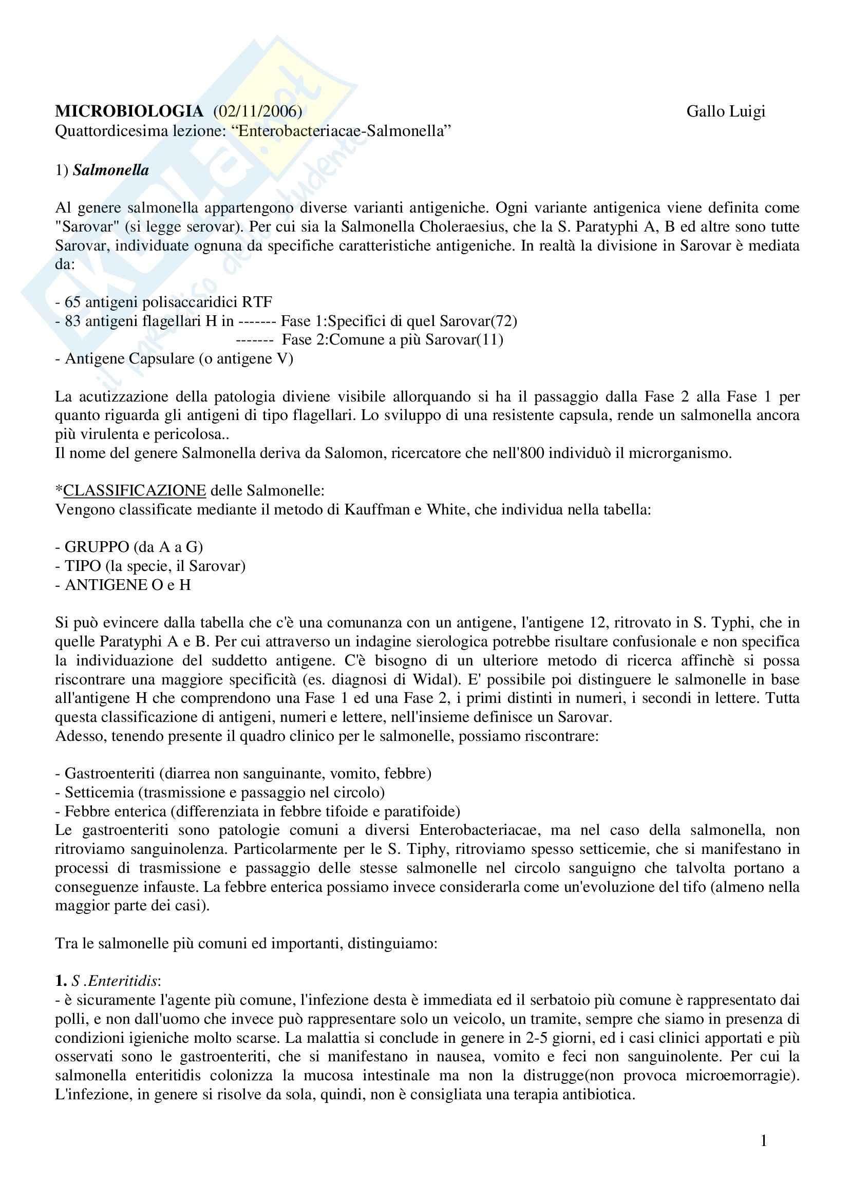 Microbiologia - enterobacteriacae salmonella