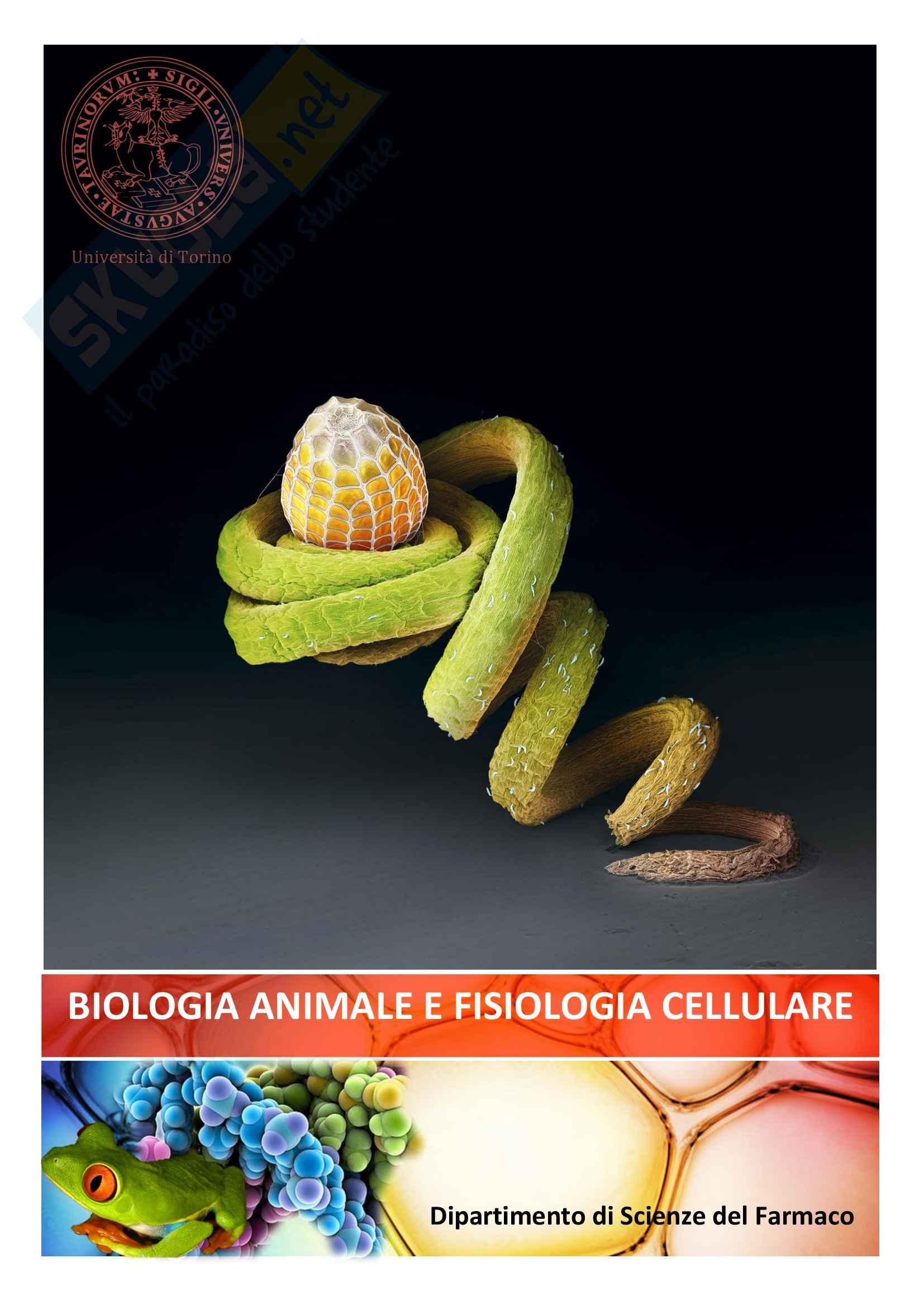 Biologia Animale e Fisiologia - Appunti
