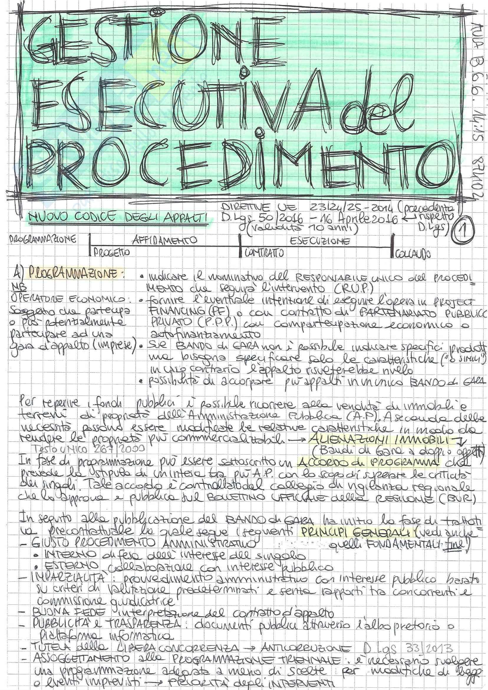 Gestione Esecutiva del Procedimento - Teoria