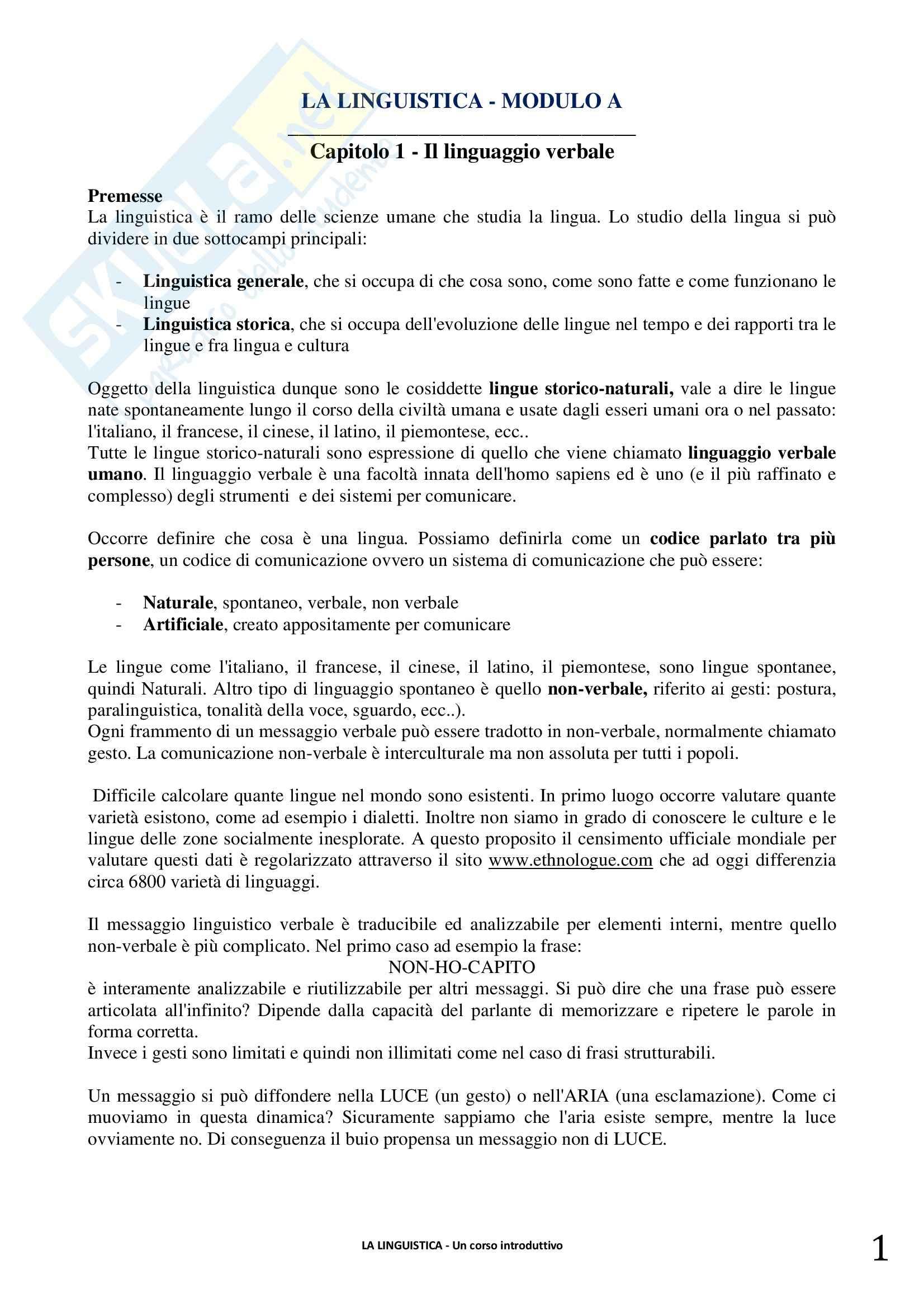 Riassunto esame linguistica generale, prof. Berruto, libro consigliato La Linguistica. Berruto, Cerruti