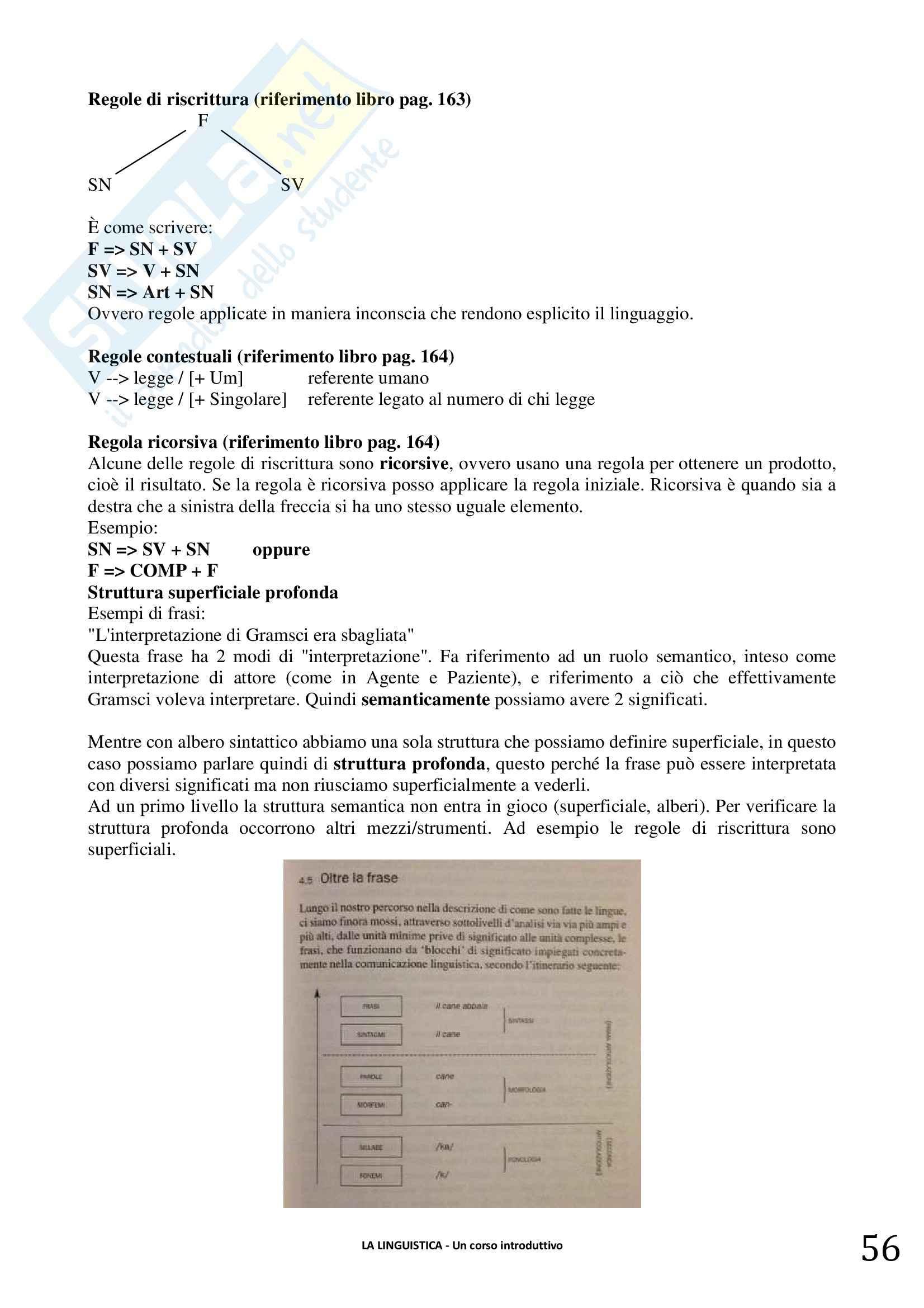 Riassunto esame linguistica generale, prof. Berruto, libro consigliato La Linguistica. Berruto, Cerruti Pag. 56