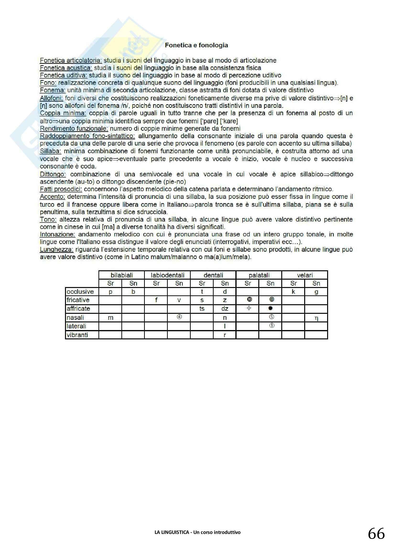 Riassunto esame linguistica generale, prof. Berruto, libro consigliato La Linguistica. Berruto, Cerruti Pag. 66