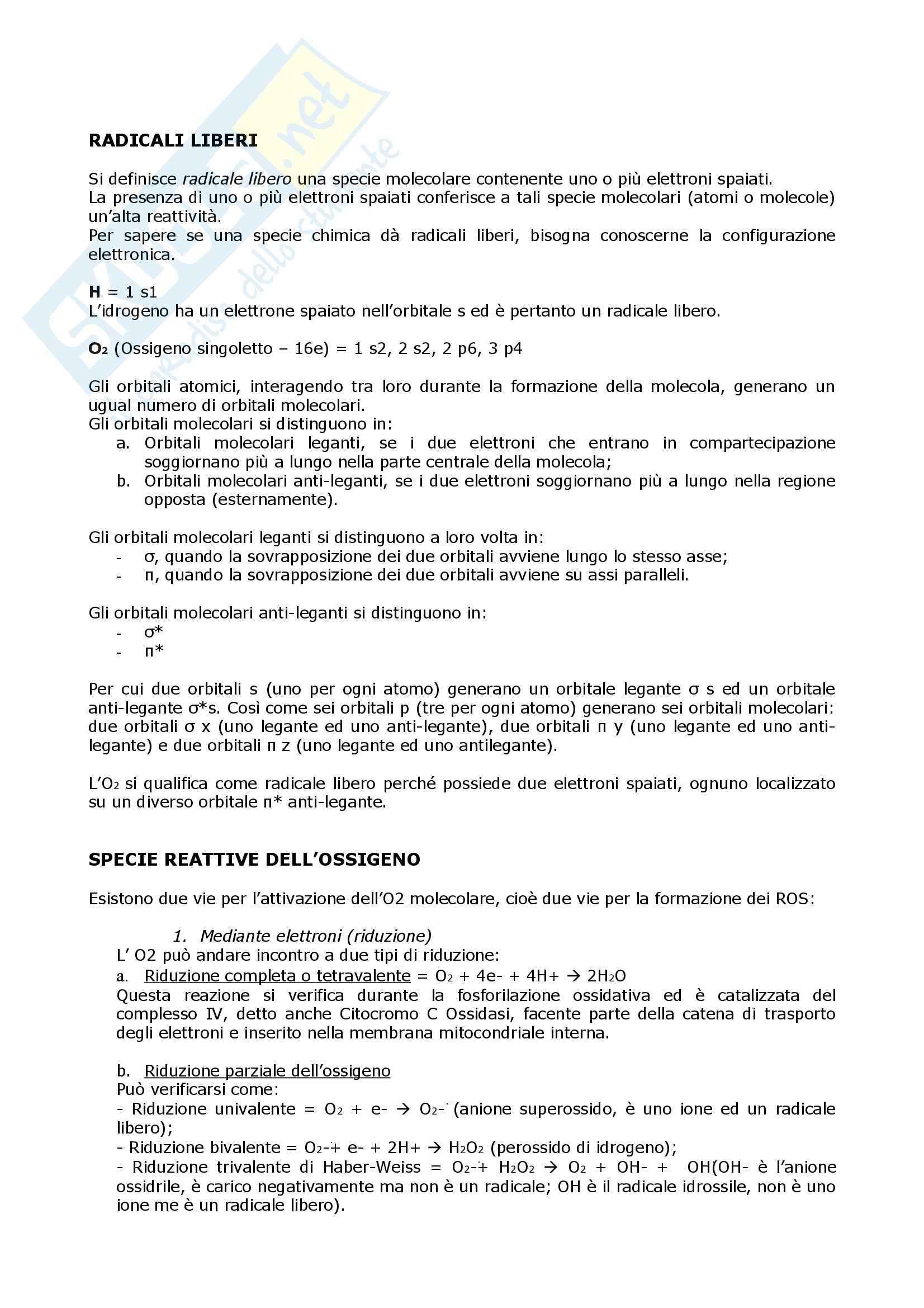 Biochimica  e Patologia clinica - Appunti