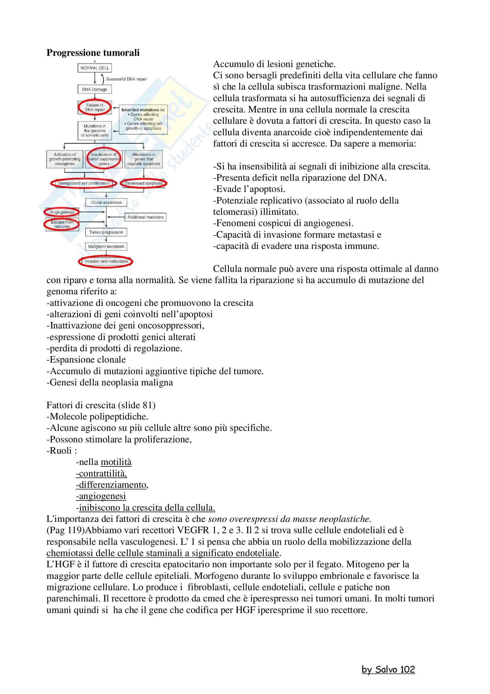 Patologia generale - la progressione della massa tumorale