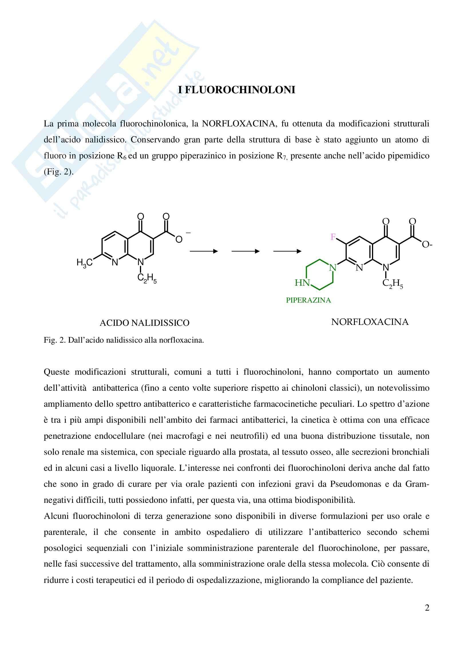 Chimica farmaceutica - fluorochinoloni Pag. 2