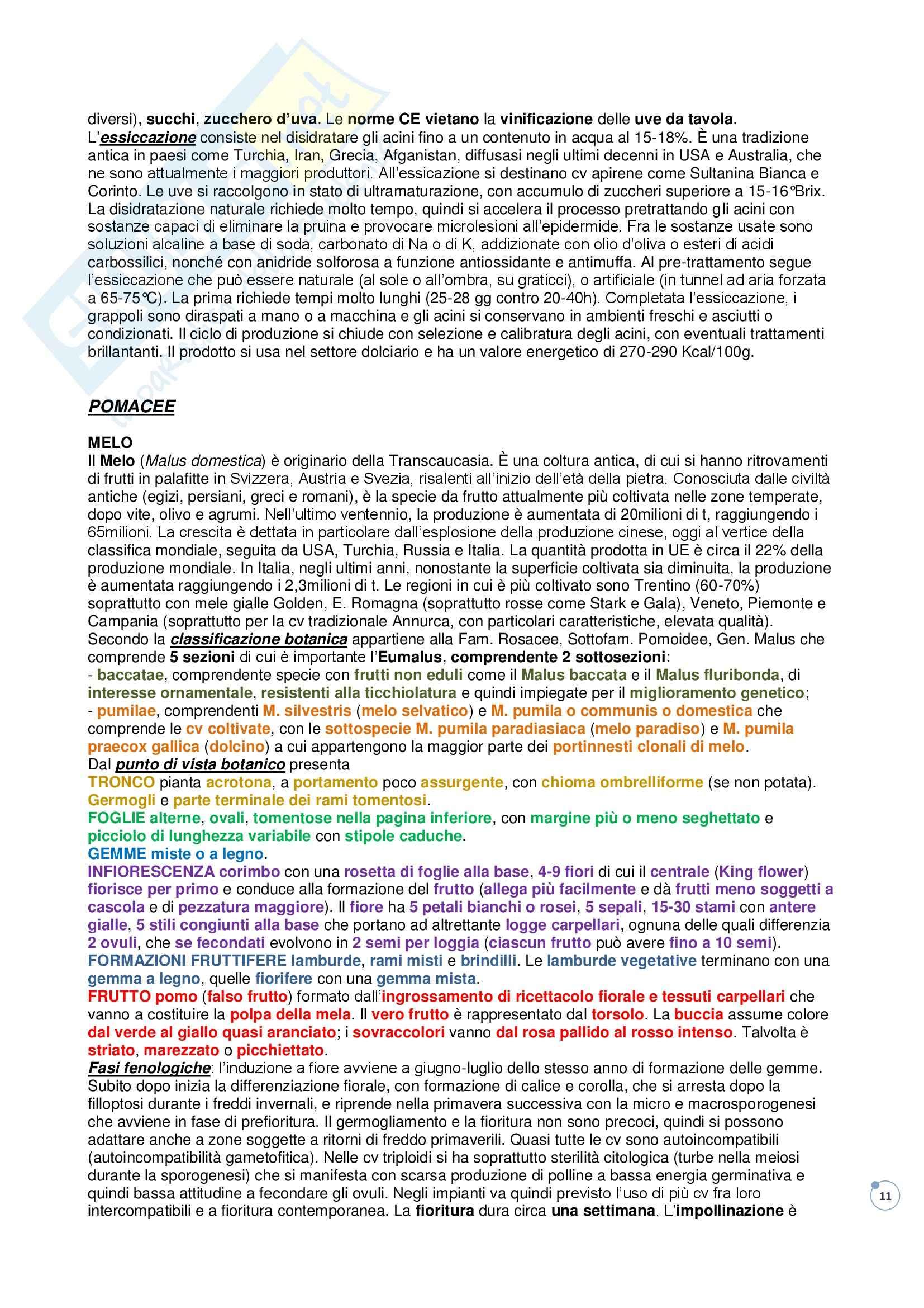 Riassunto esame Produzioni Arboree e Qualità delle Materie Prime, prof. Gallotta Pag. 11