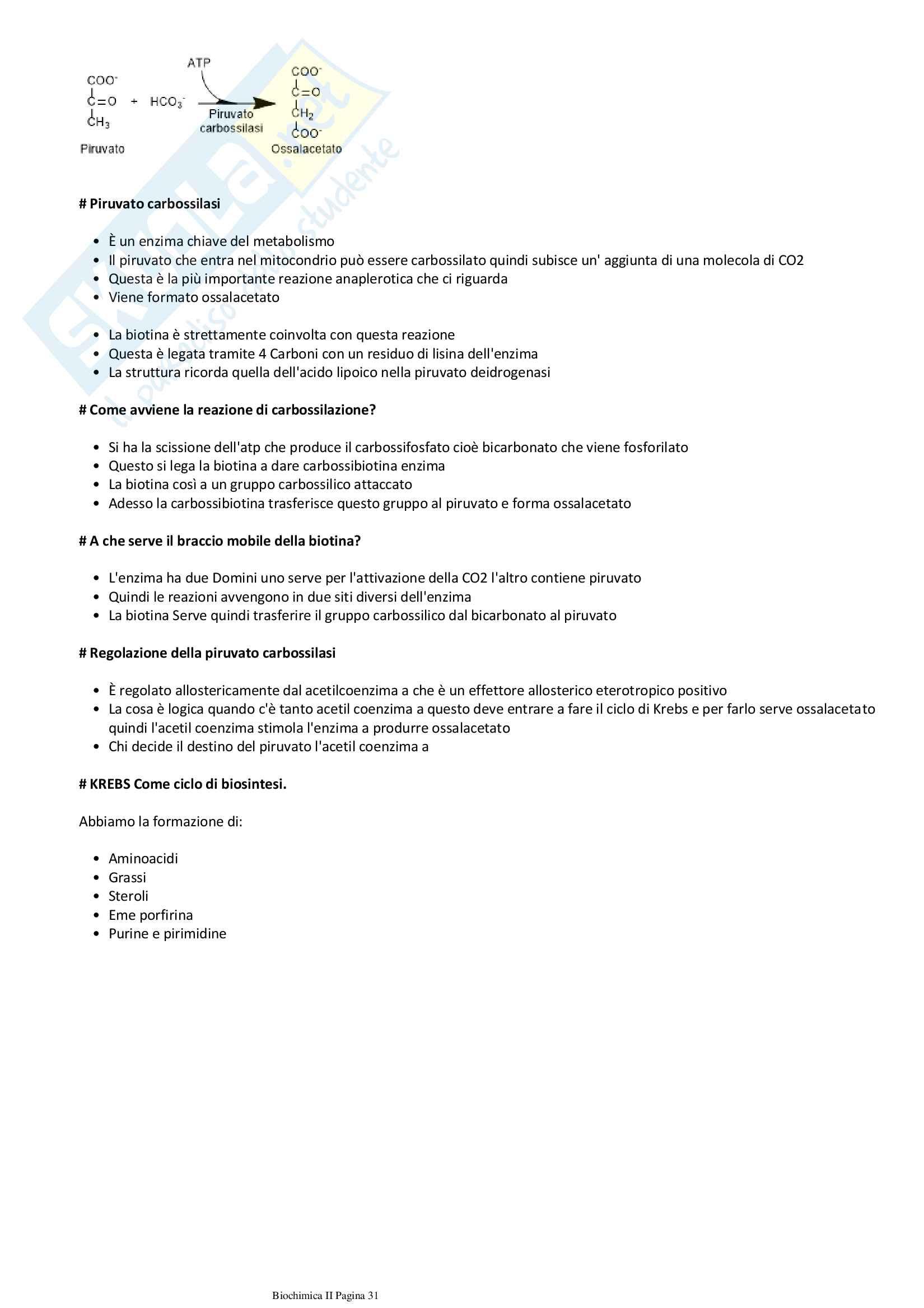 Biochimica metabolica Pag. 31