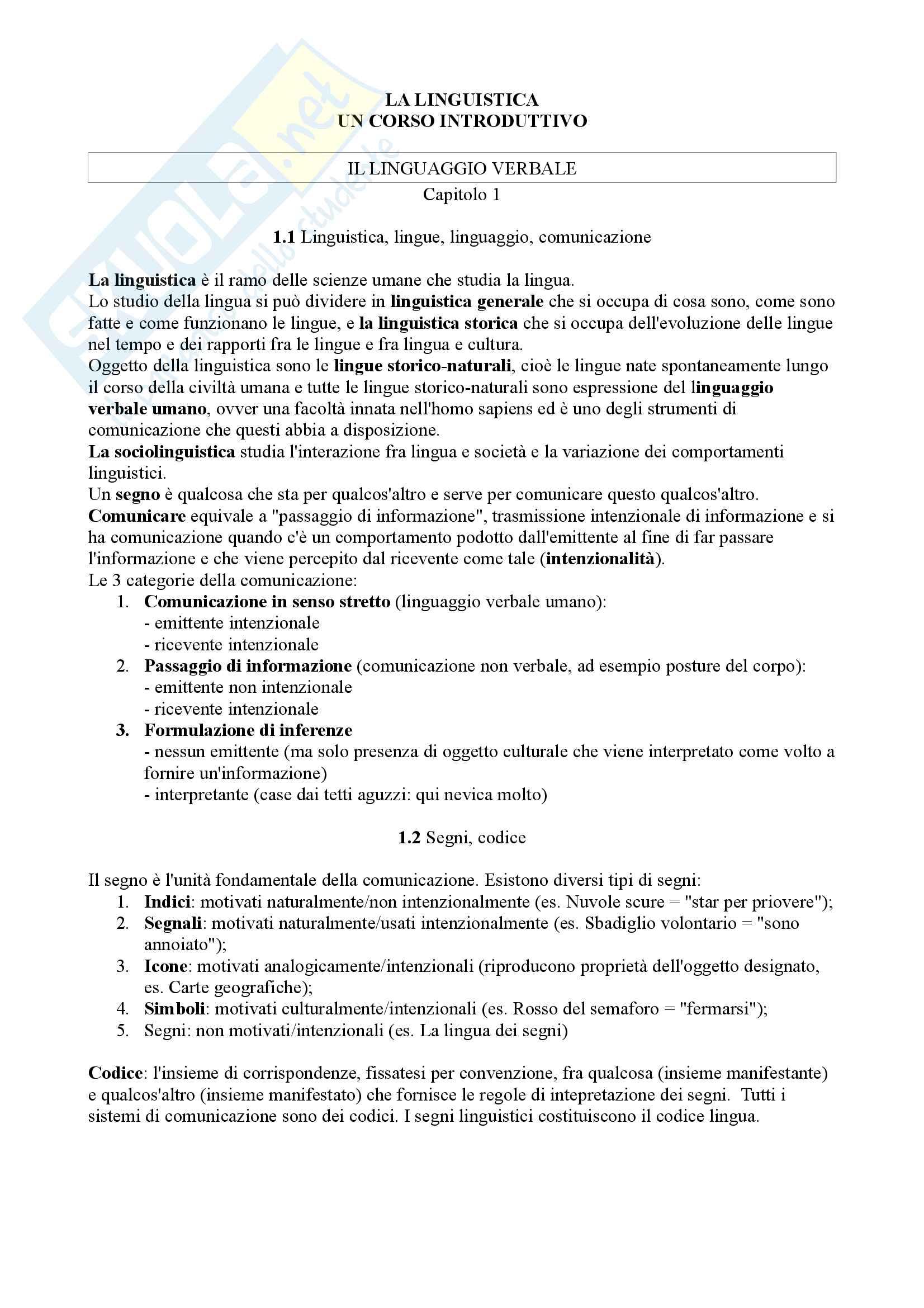 Riassunto esame Fondamenti di Linguistica, docente Marinetti Anna, libro consigliato La Linguistica - un corso introduttivo di G. Berruto, M. Cerrutti