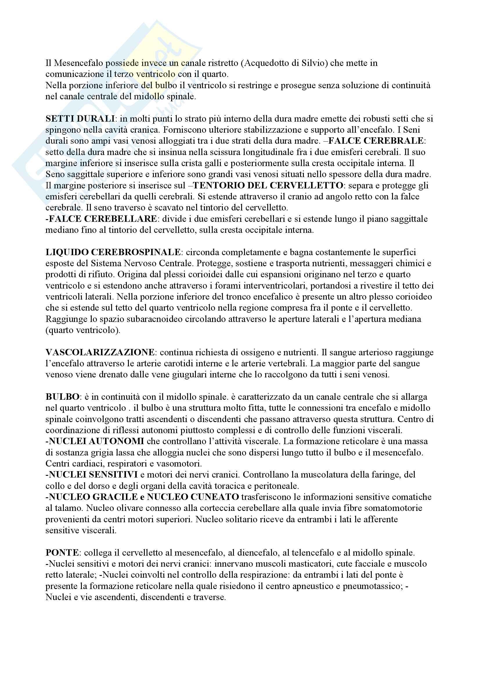 Riassunti Anatomia per Professioni Sanitarie Pag. 6