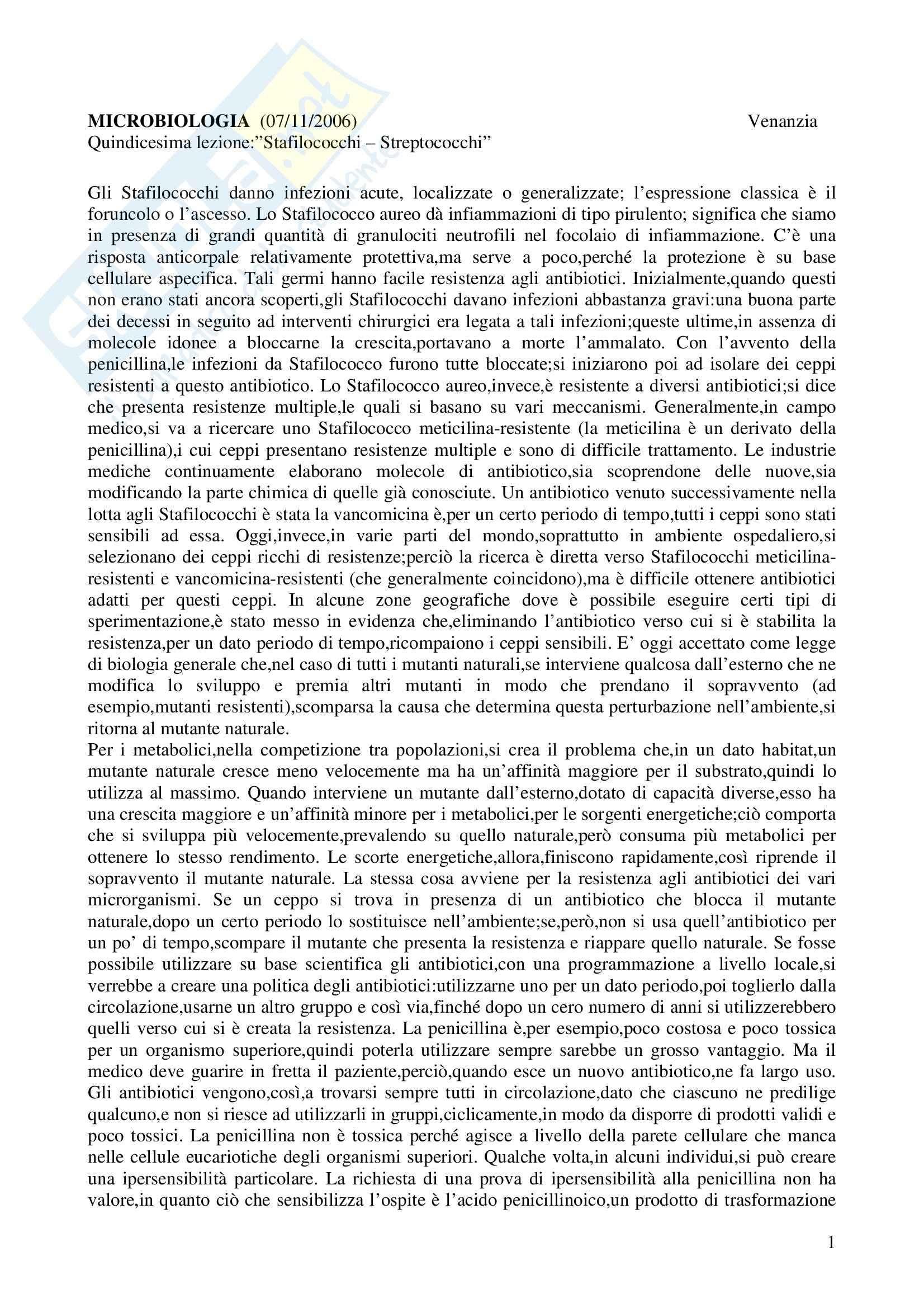 Microbiologia - stafilococchi e streptococchi