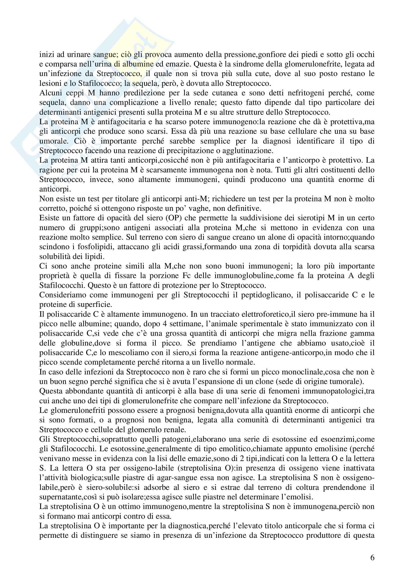 Microbiologia - stafilococchi e streptococchi Pag. 6