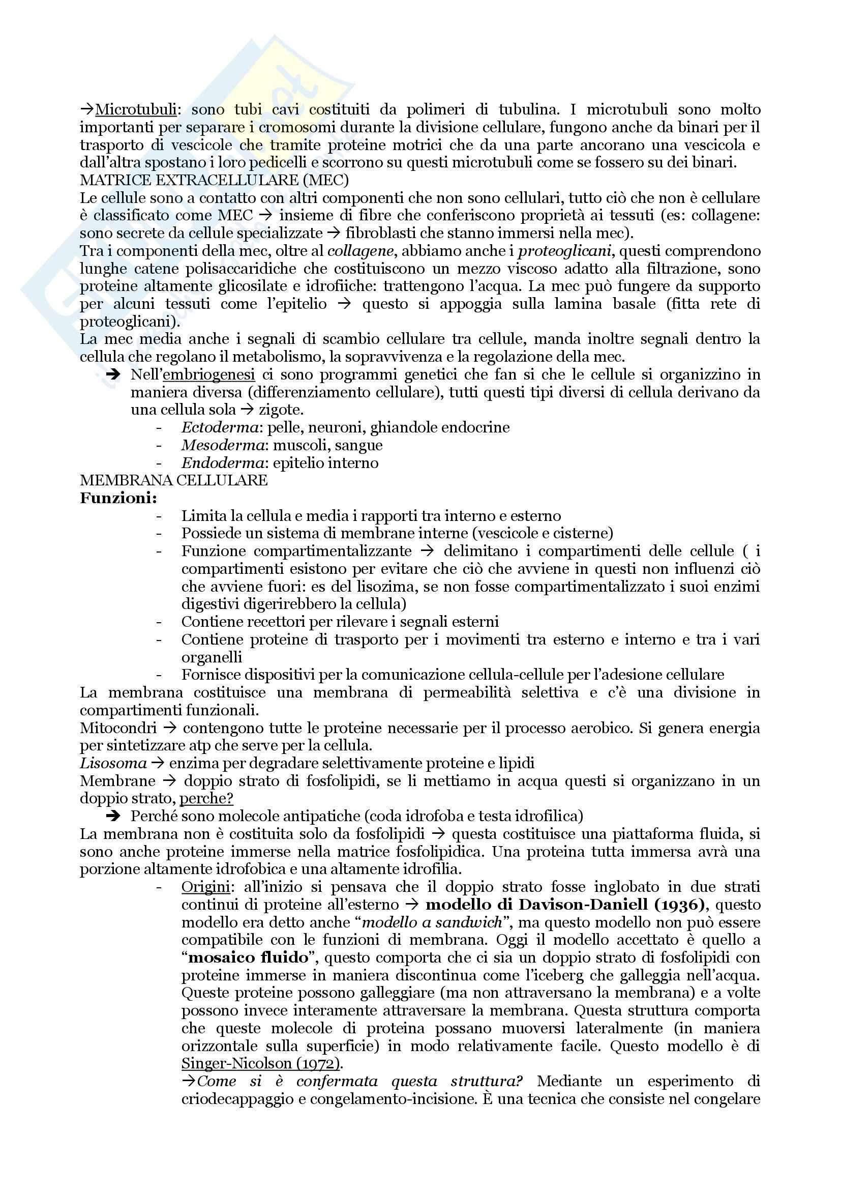 Biologia Applicata - Appunti, Slides e Schemi libro Pag. 11