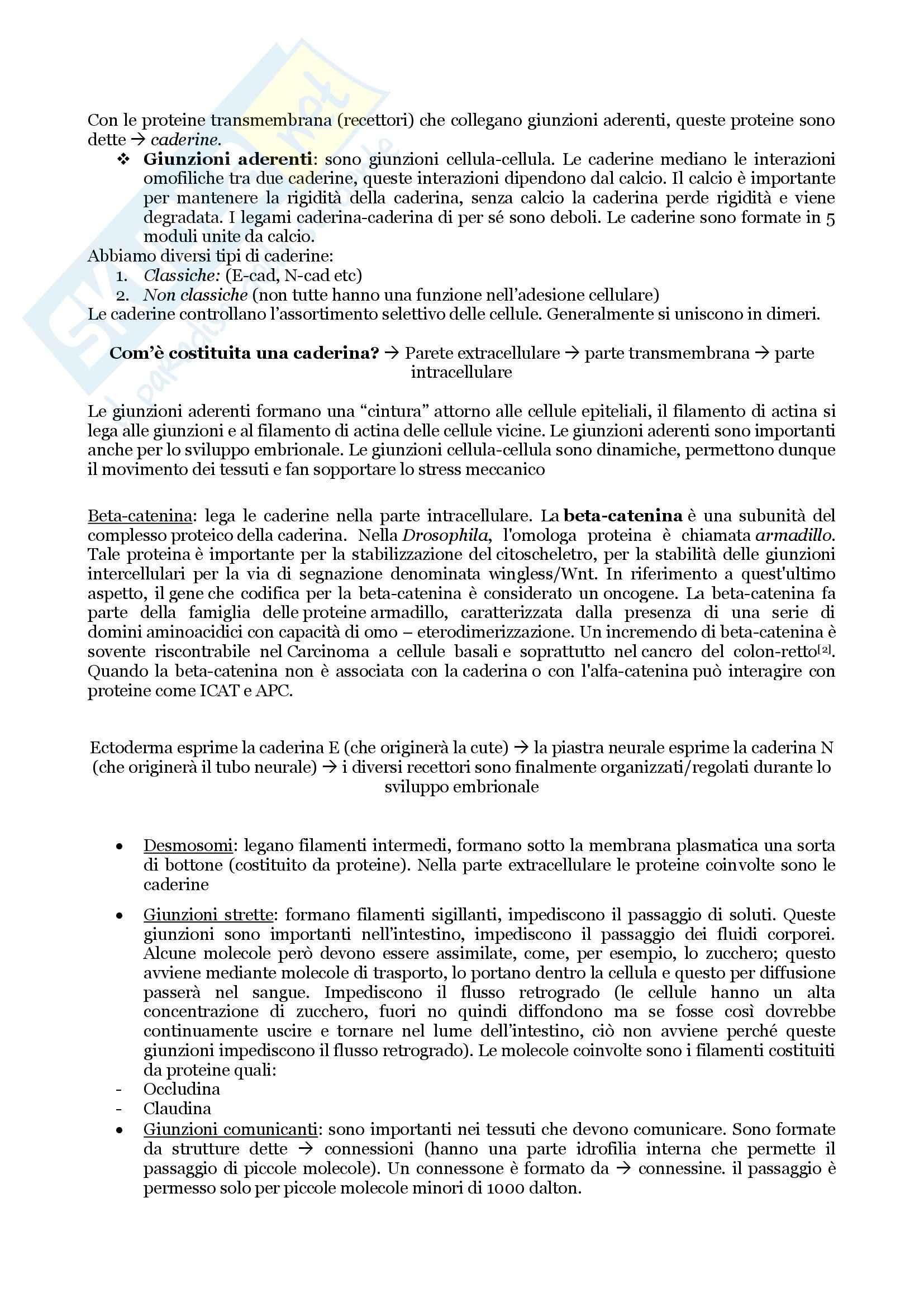 Biologia Applicata - Appunti, Slides e Schemi libro Pag. 71