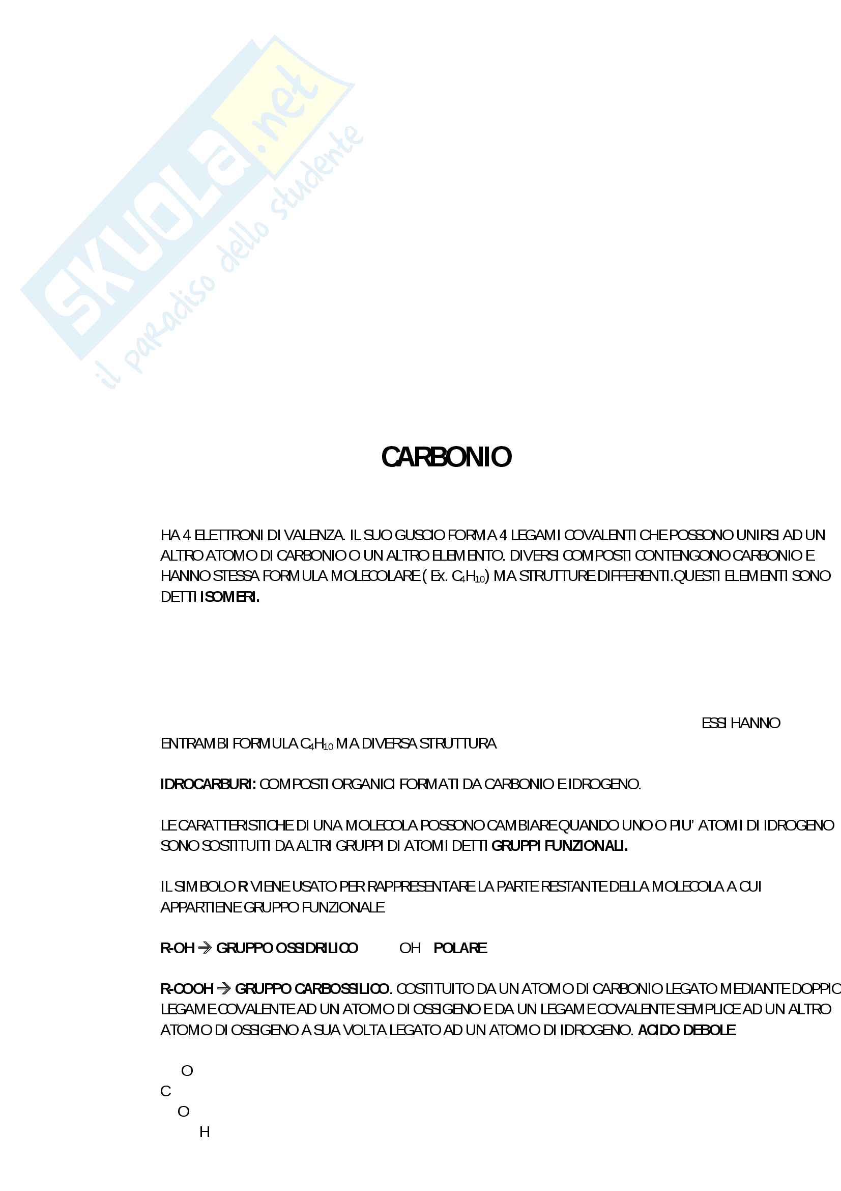 1° Esonero Biologia Pag. 2