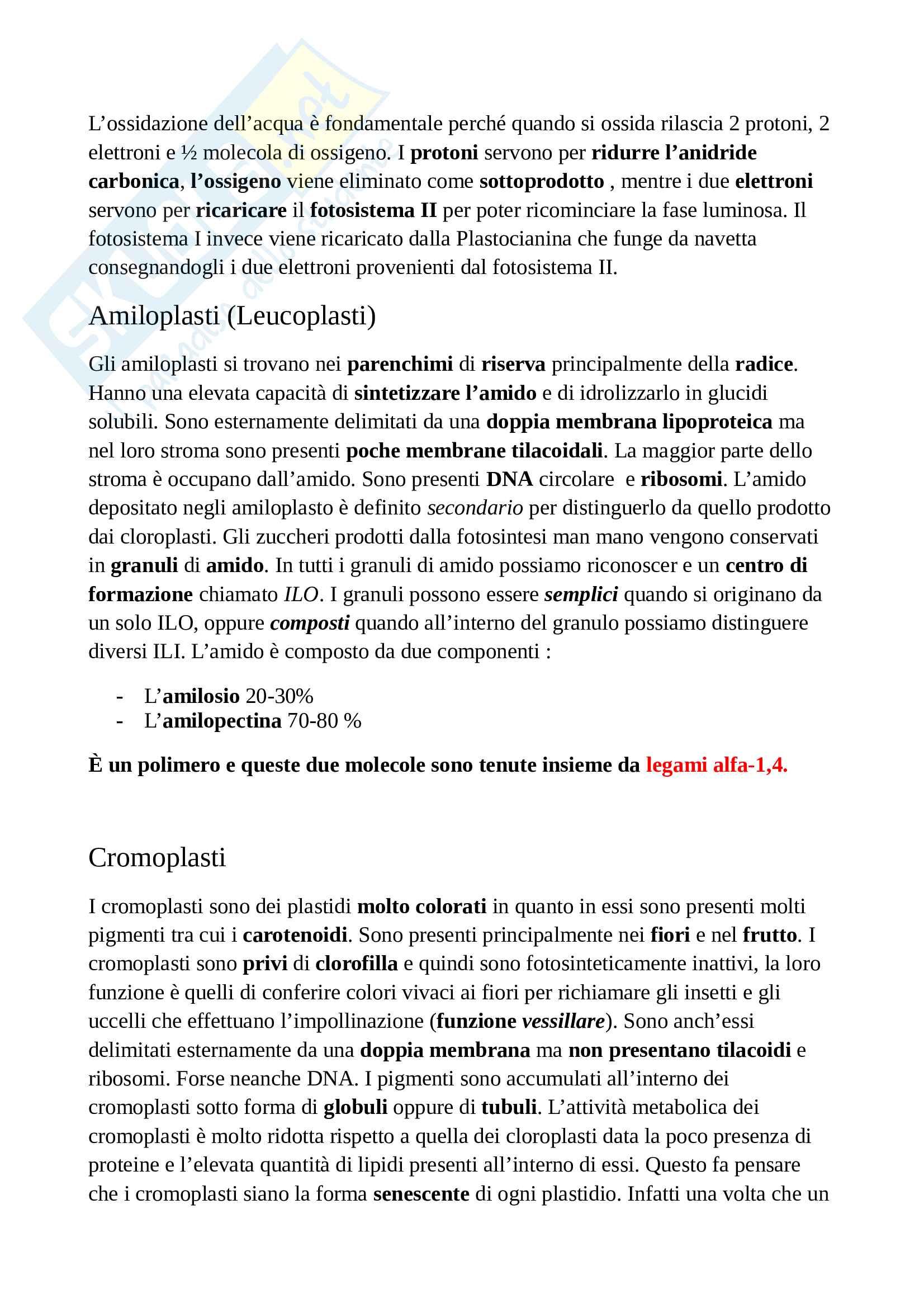 Appunti di botanica generale Pag. 26