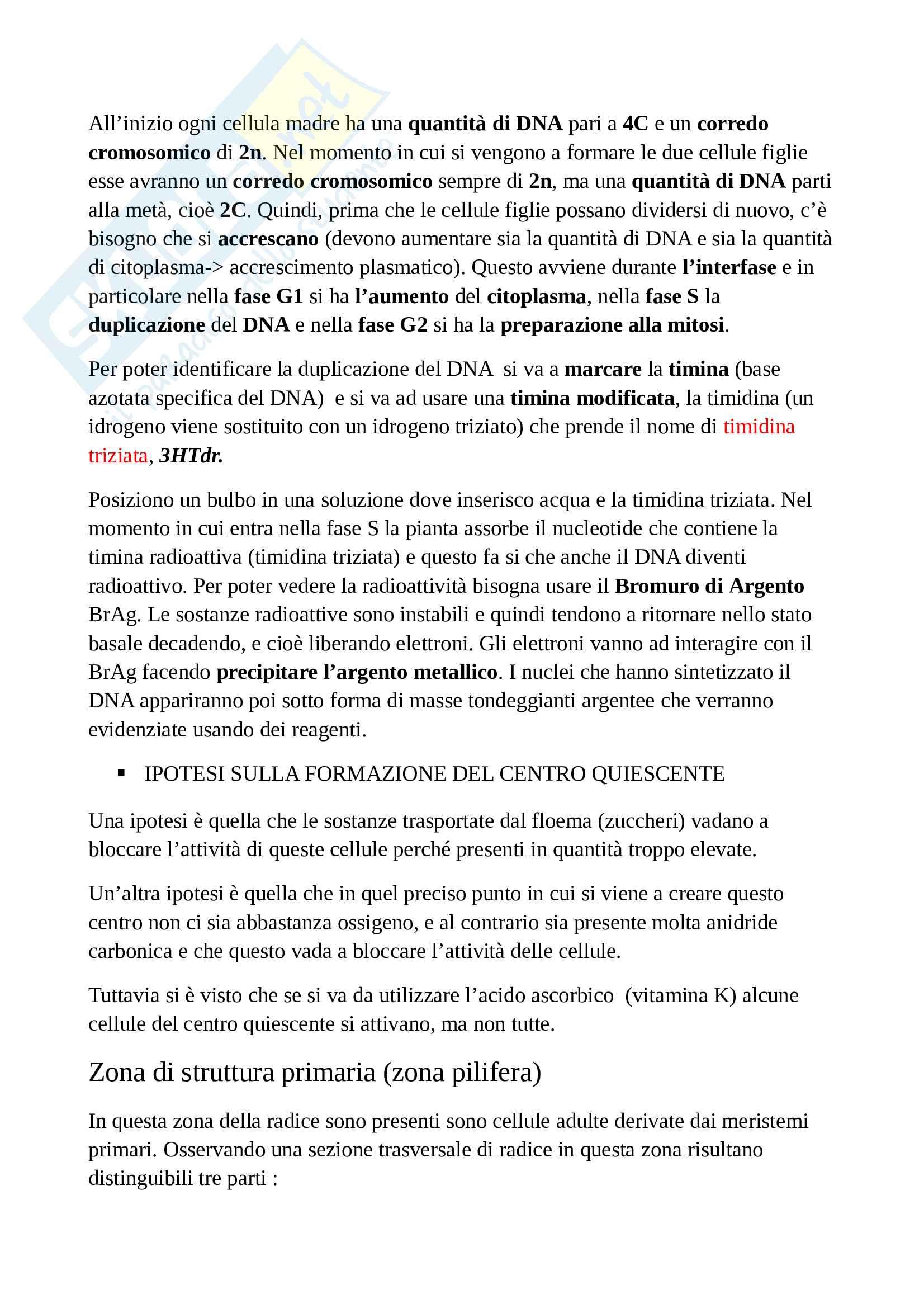 Appunti di botanica generale Pag. 31