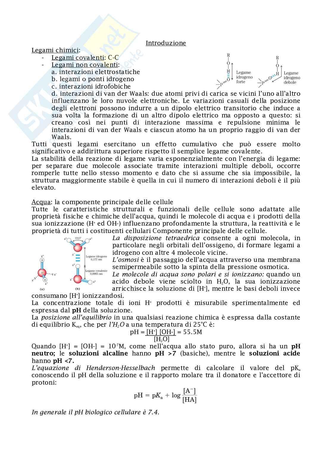 Biochimica Pag. 1