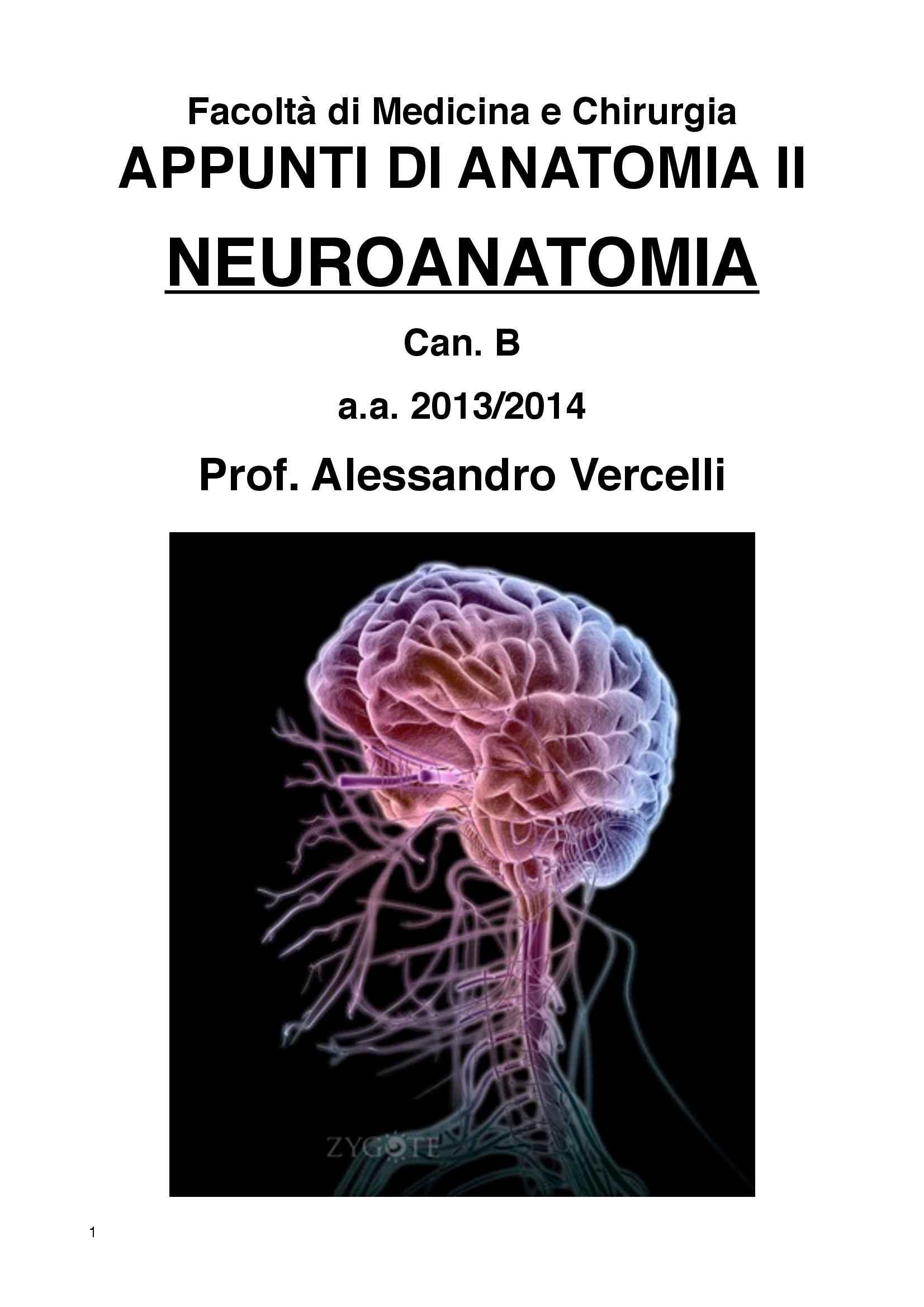 Appunti di Neuroanatomia - Anatomia II