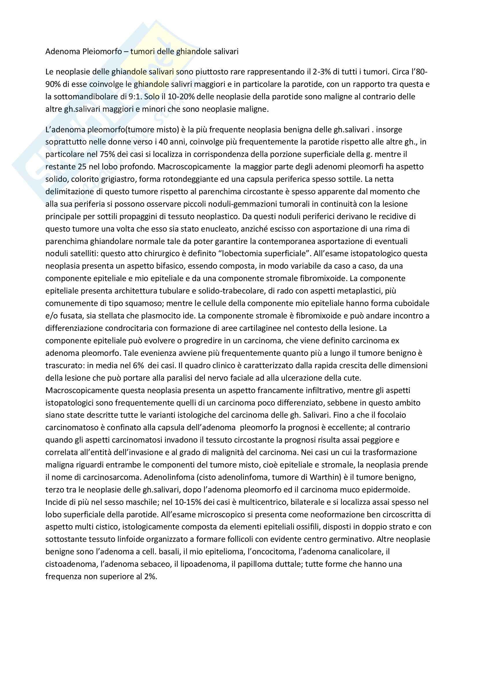 Anatomia patologica - l'adenoma pleiomorfo