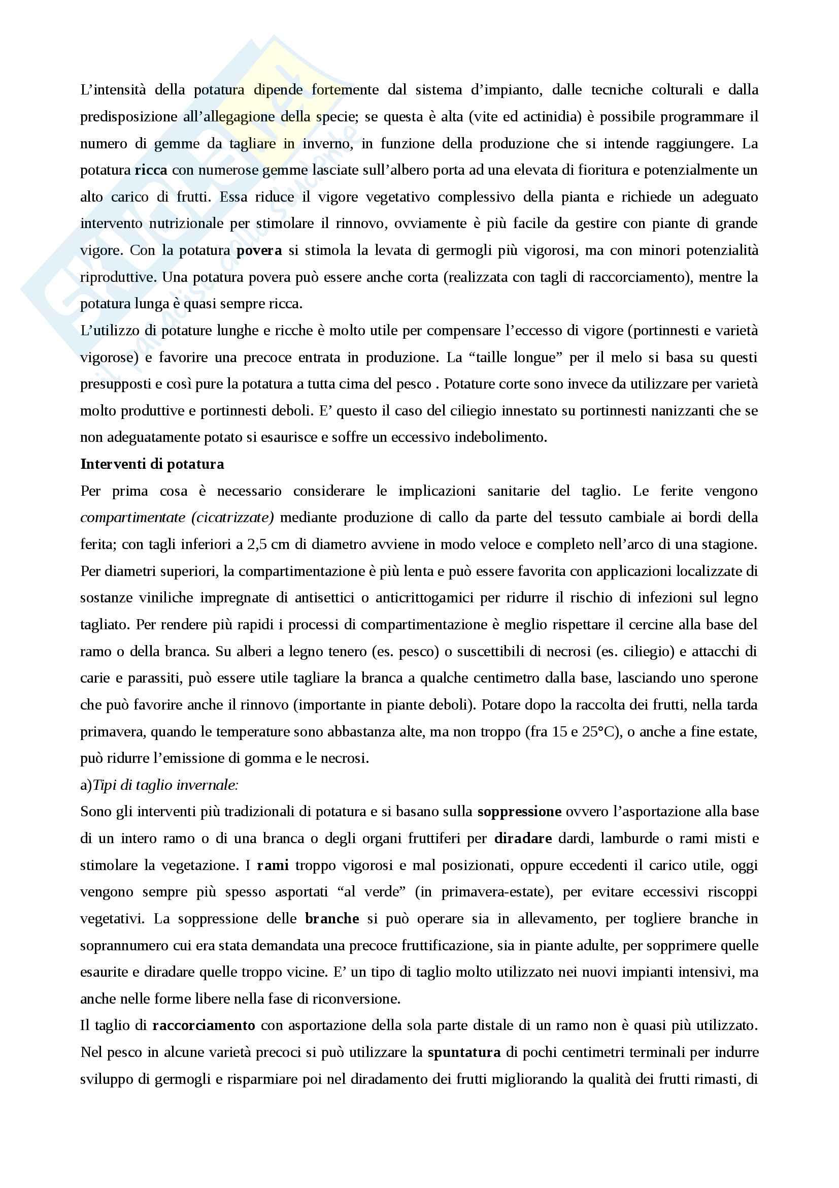 Arboricoltura Pag. 16