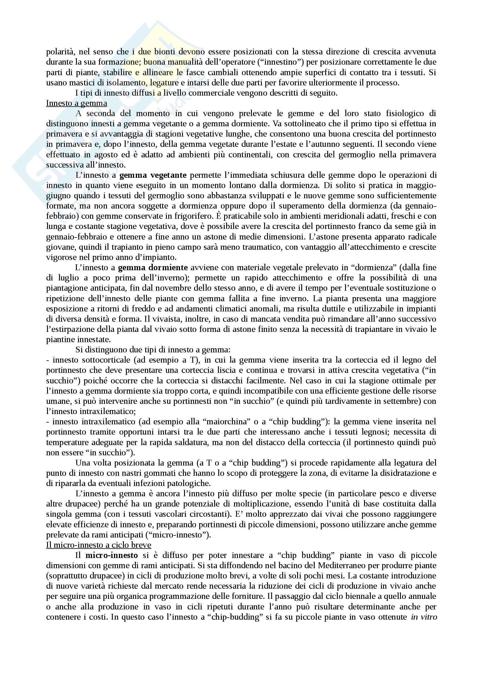 Arboricoltura Pag. 26