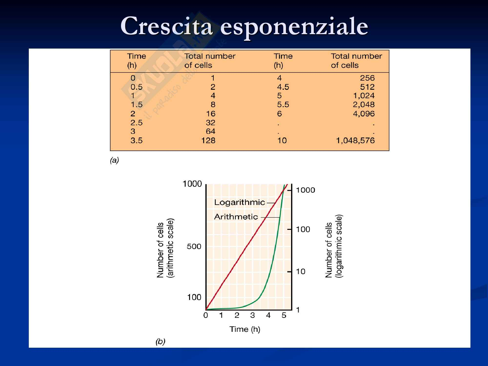 Crescita Microbica Pag. 2