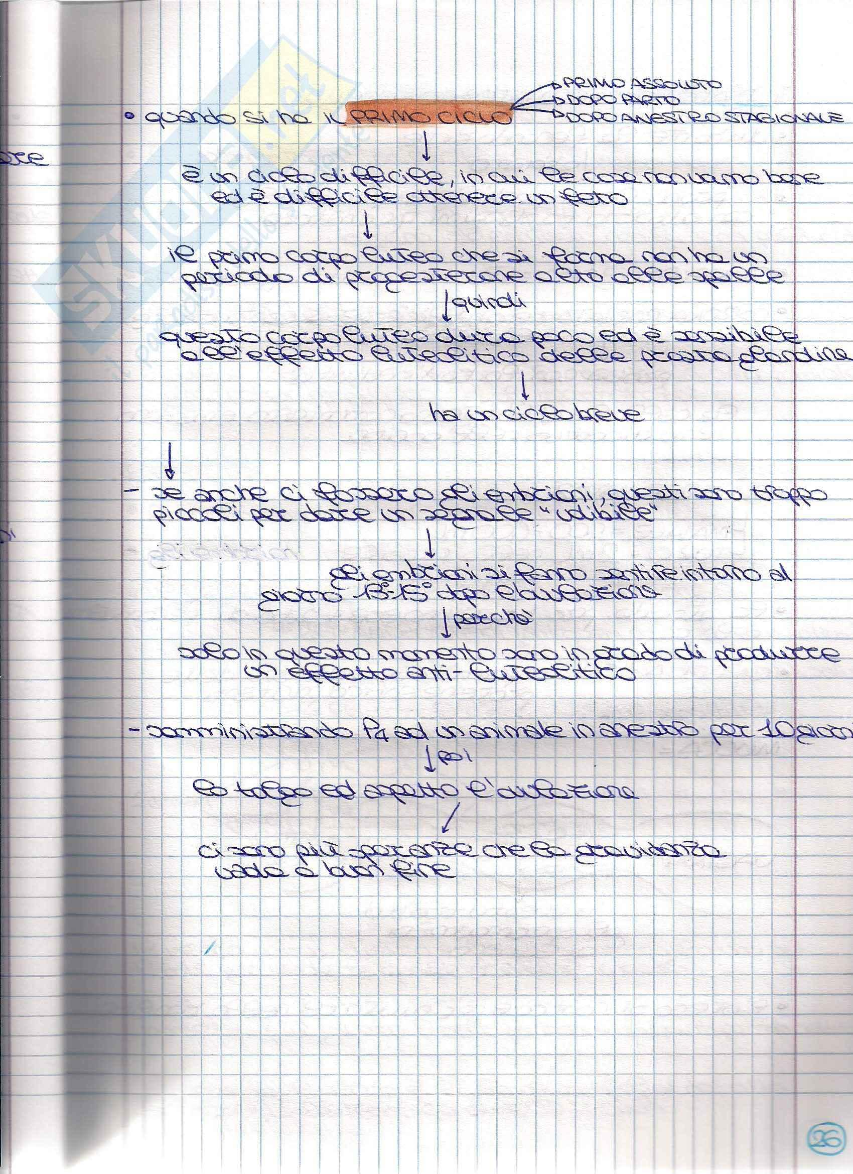 Struttura e funzione dell'apparato riproduttore - Appunti Pag. 51