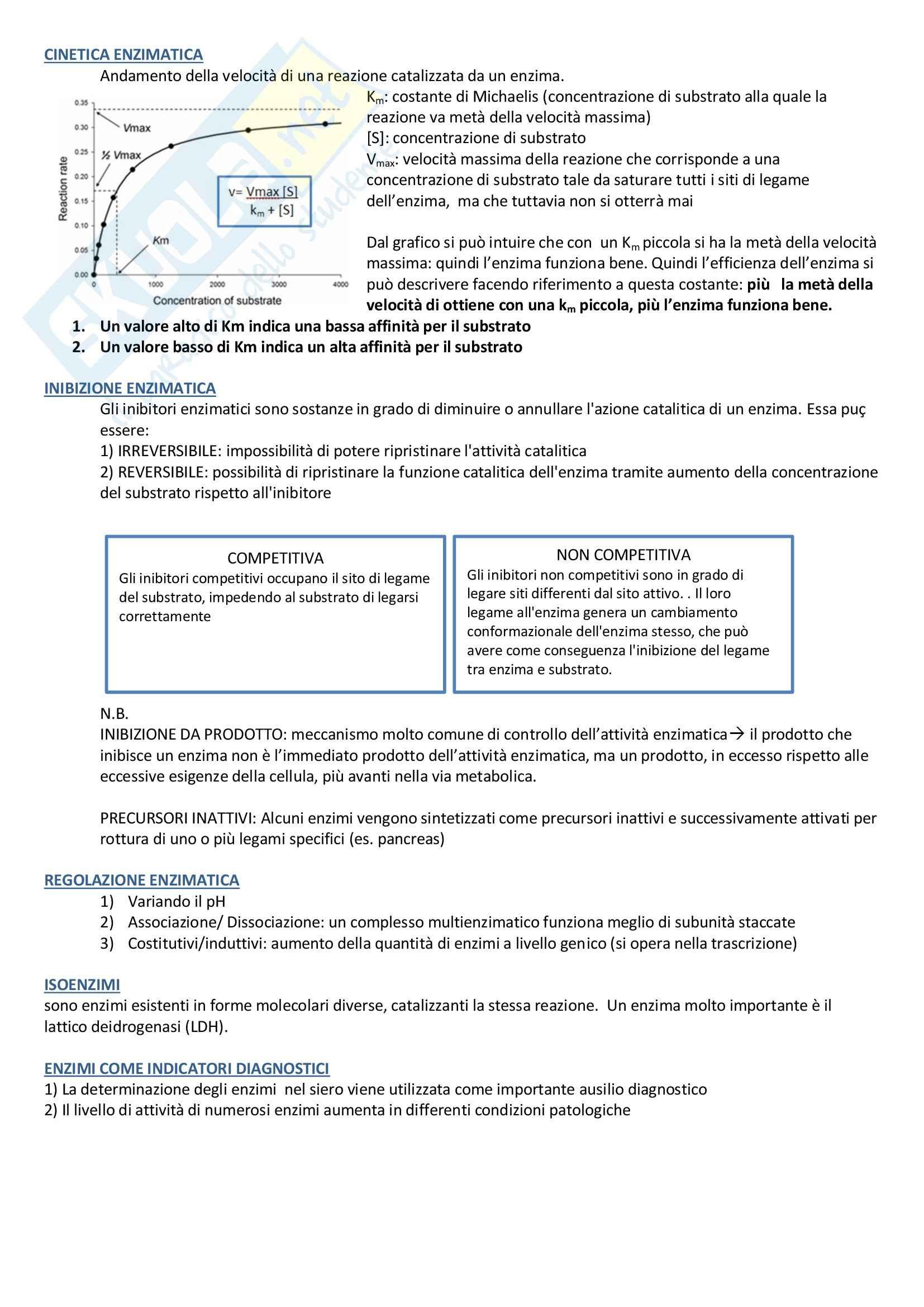 Riassunto esame Biochimica, prof. Palestini Pag. 2