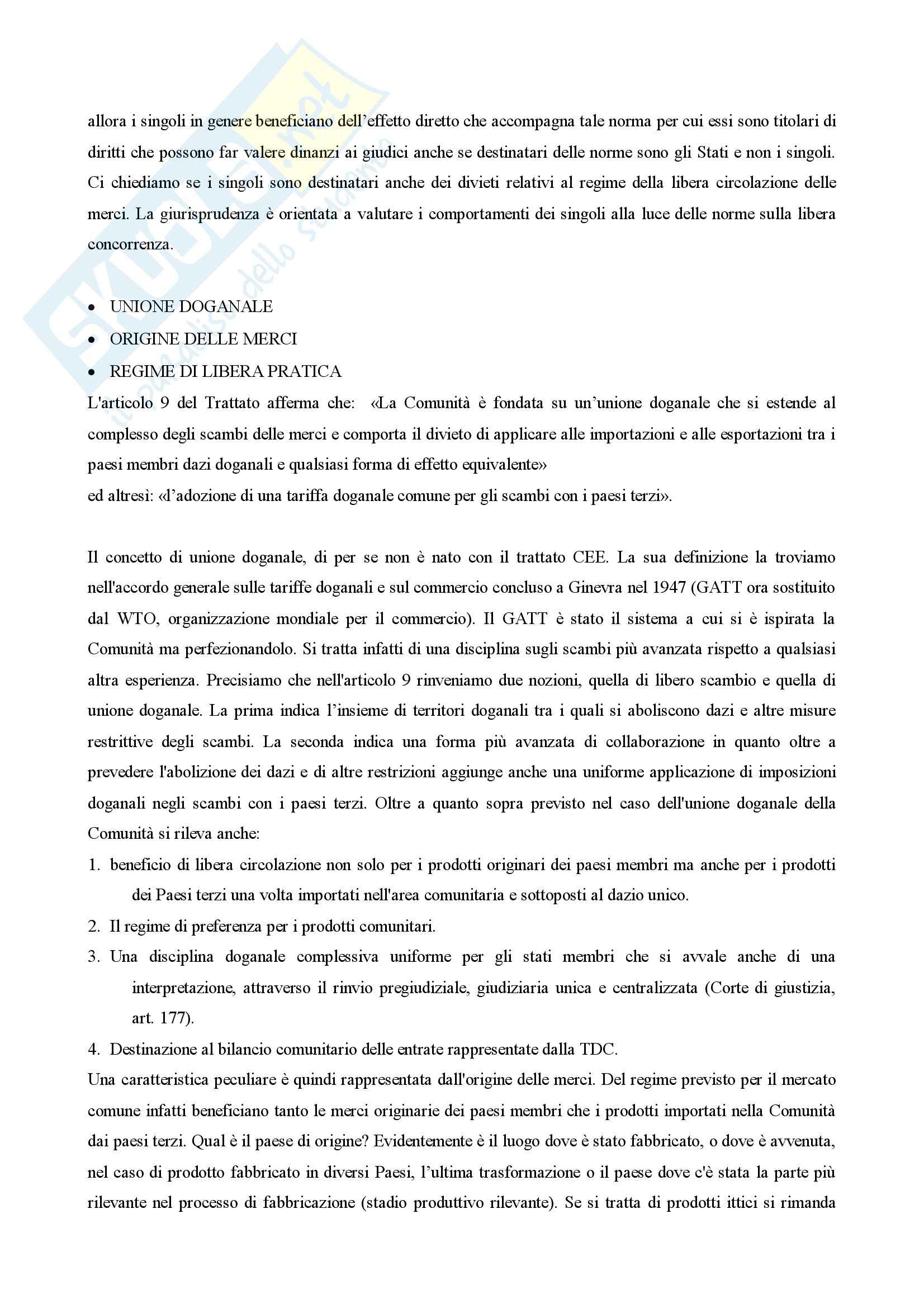 Diritto dell'Unione Europea Pag. 46