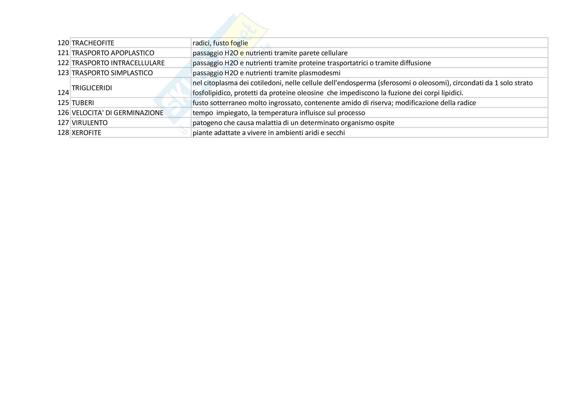 glossario botanica Pag. 6