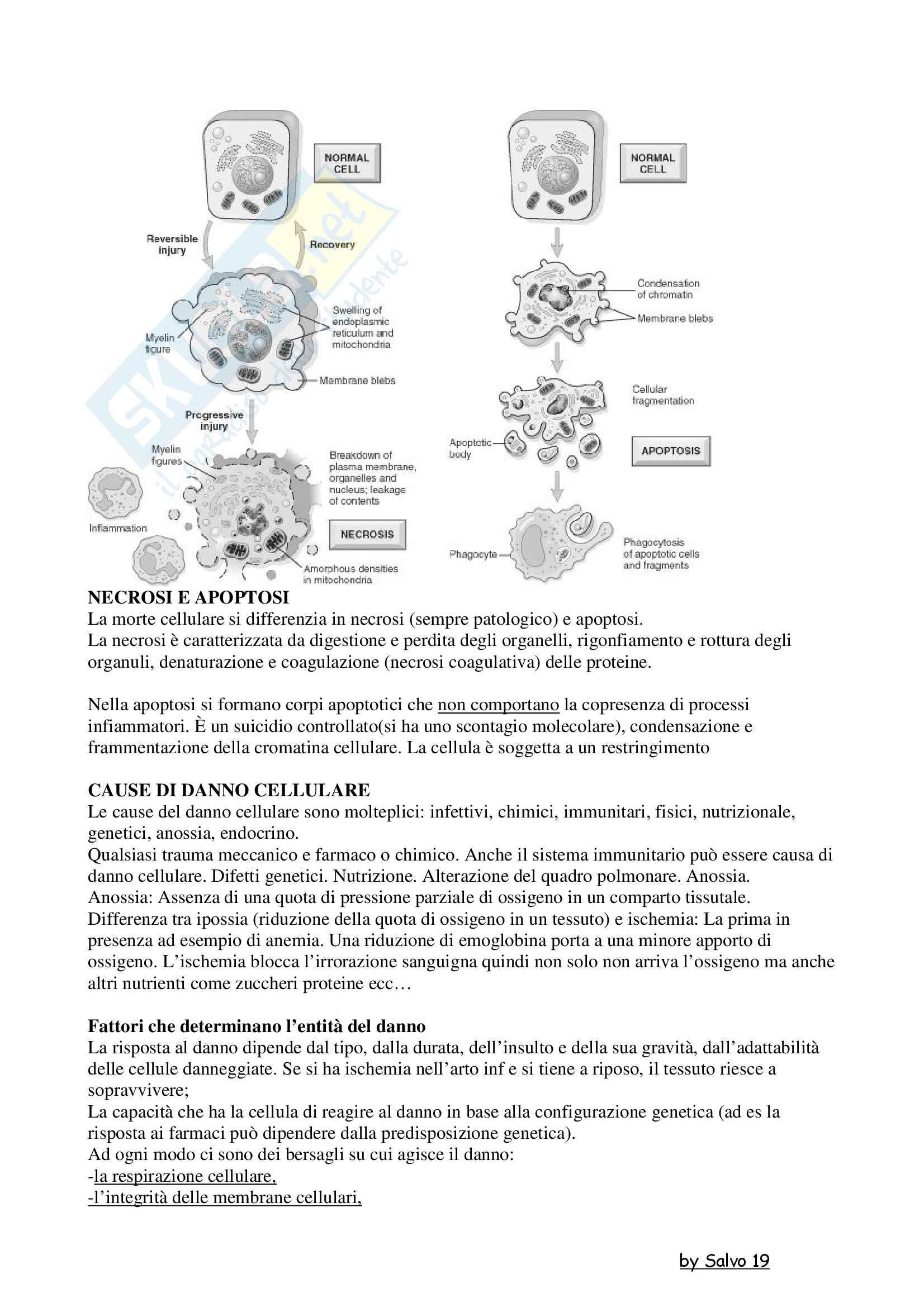 Patologia generale - la morte cellulare