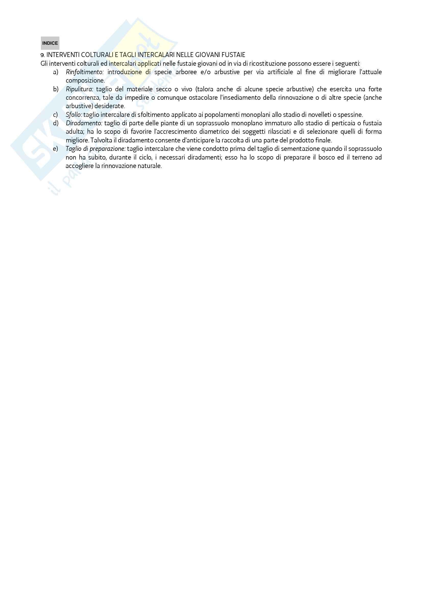 Selvicoltura speciale - Il dizionario forestale Pag. 11