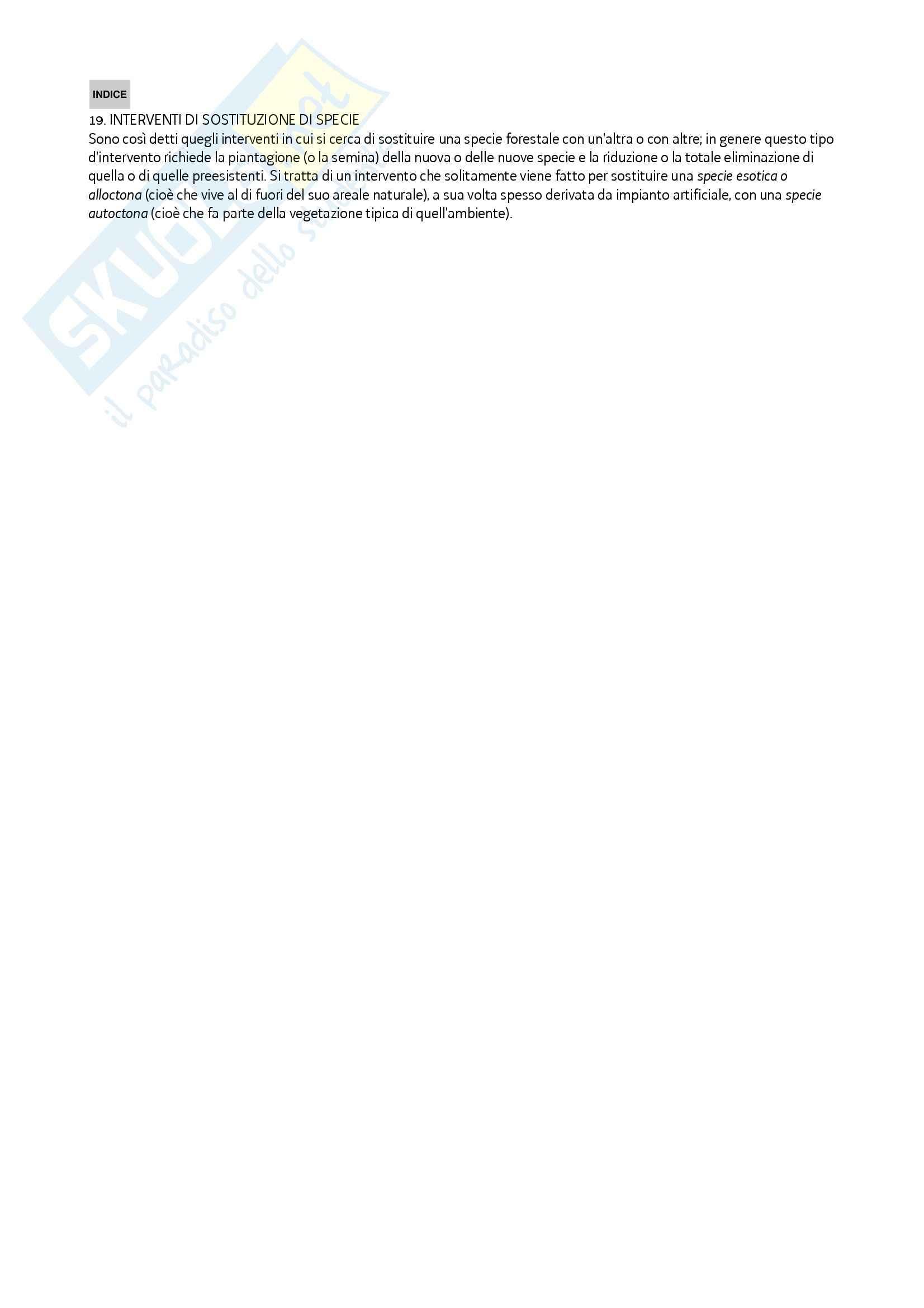 Selvicoltura speciale - Il dizionario forestale Pag. 21