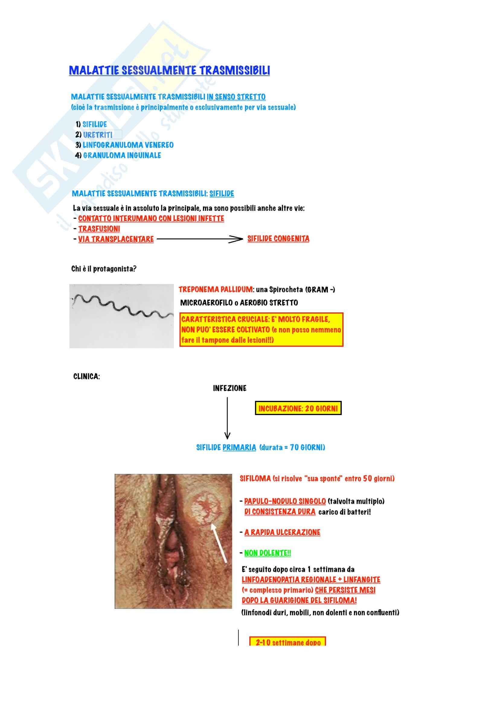 Dermatologia - malattie sessualmente trasmissibili