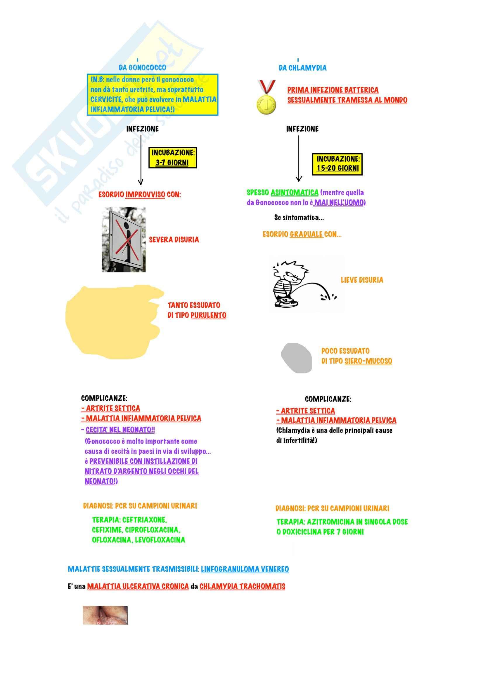 Dermatologia - malattie sessualmente trasmissibili Pag. 6