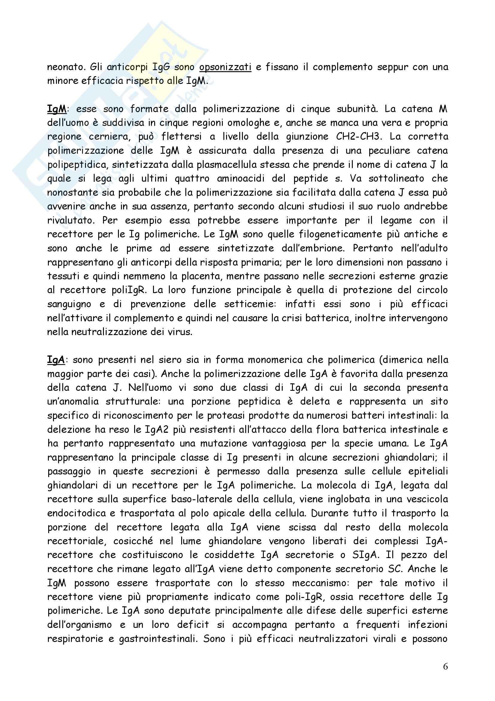 Immunologia – Immunologia e immunopatologia Pag. 6