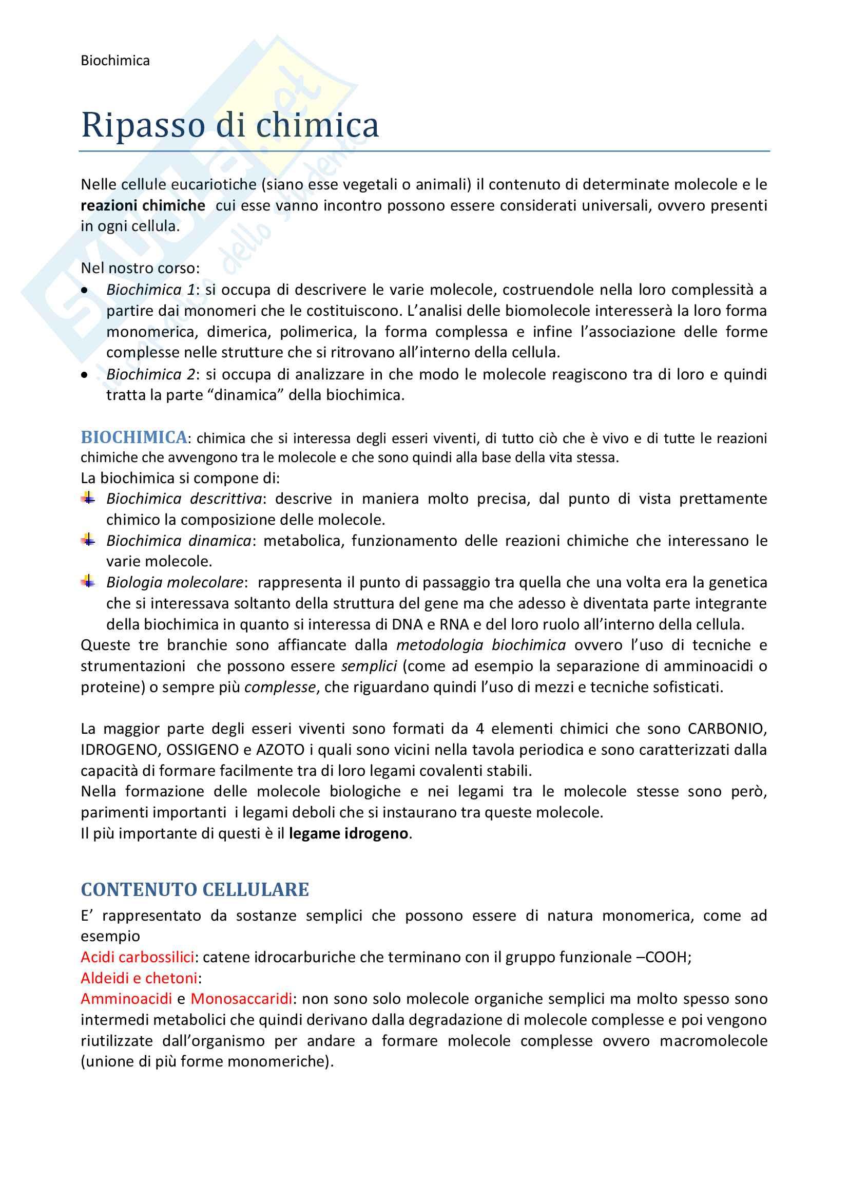 Riassunto esame biochimica Pag. 2