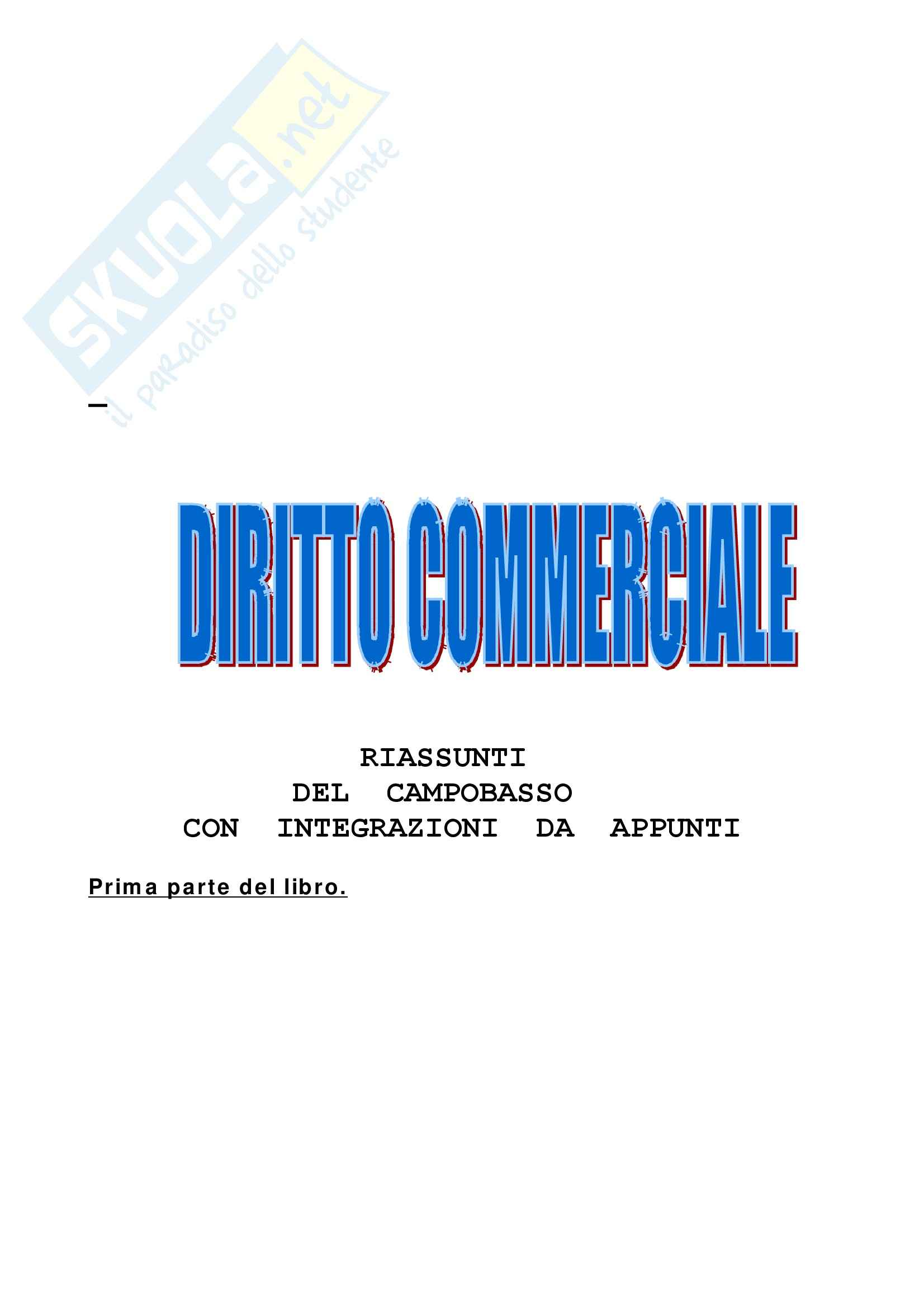 dispensa M. Piscitelli Diritto commerciale