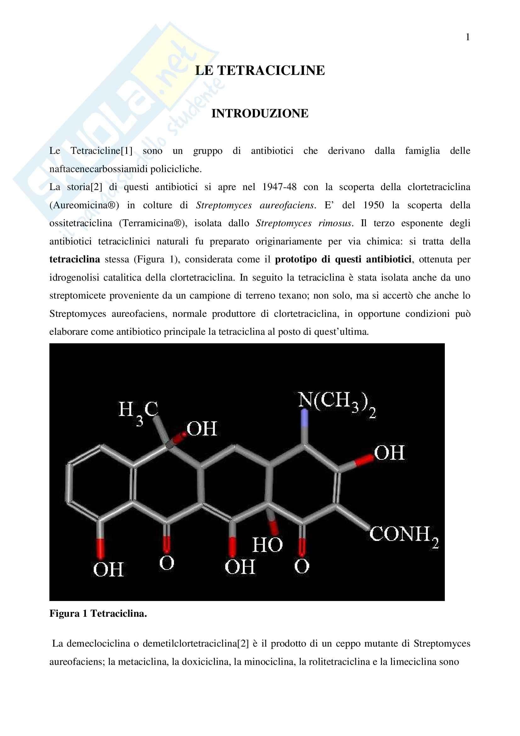 Chimica farmaceutica - tetracicline