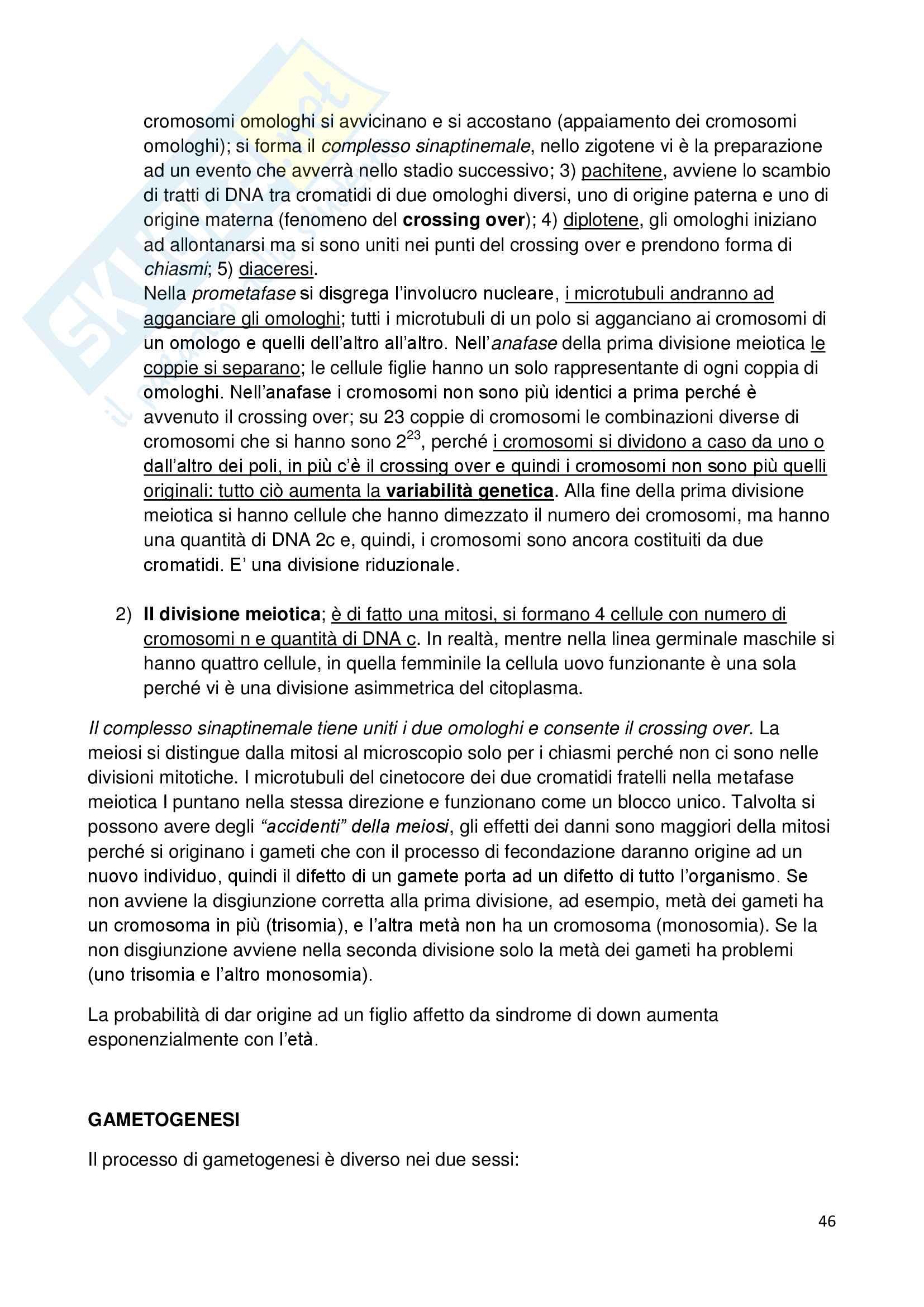 Appunti di biologia della cellula Pag. 46
