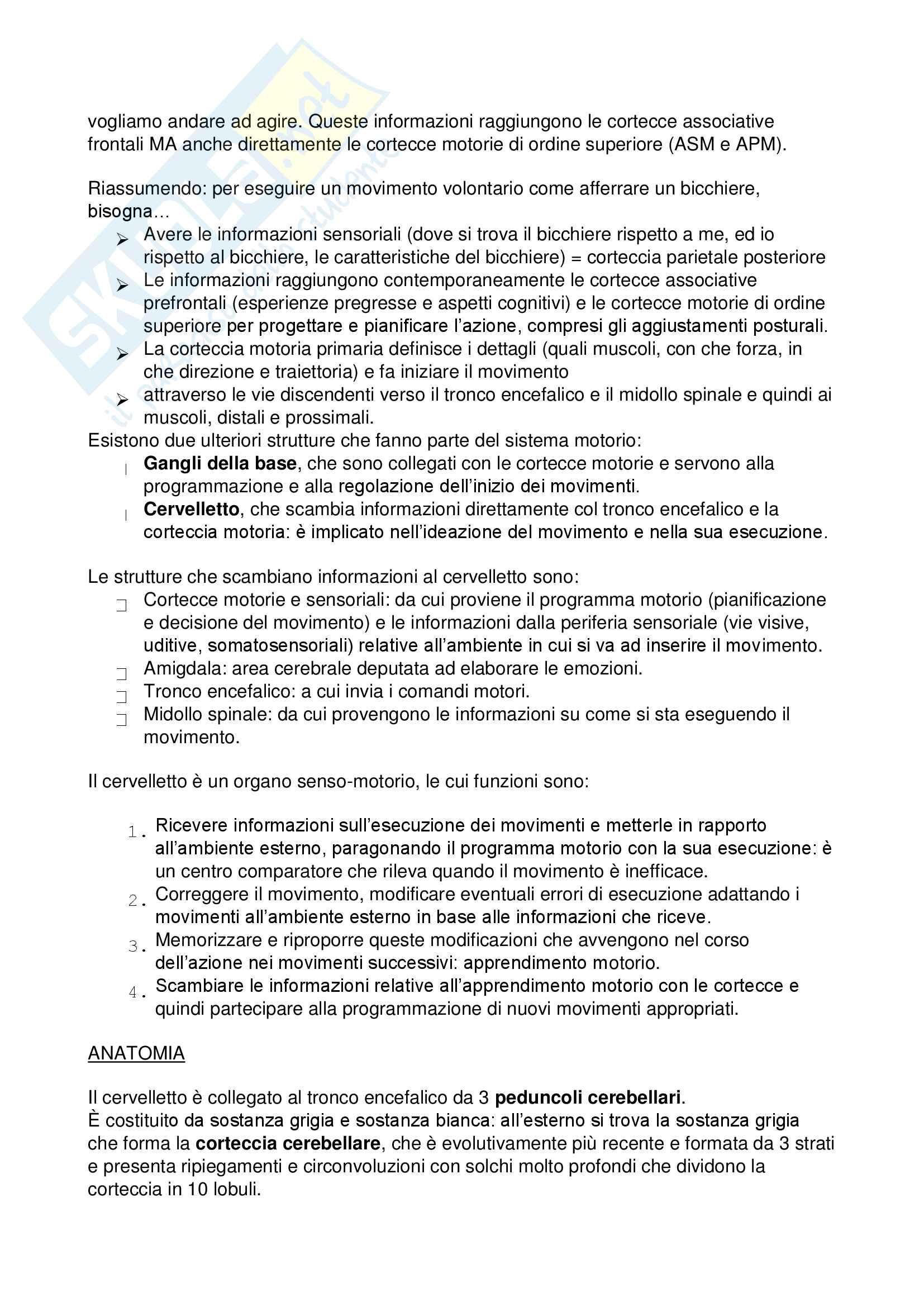 Appunti per l'esame di Neuroscienze, basato su appunti personali e studio autonomo del testo consigliato dal docente Sacchetti e Pia, Purves Neuroscienze Pag. 81