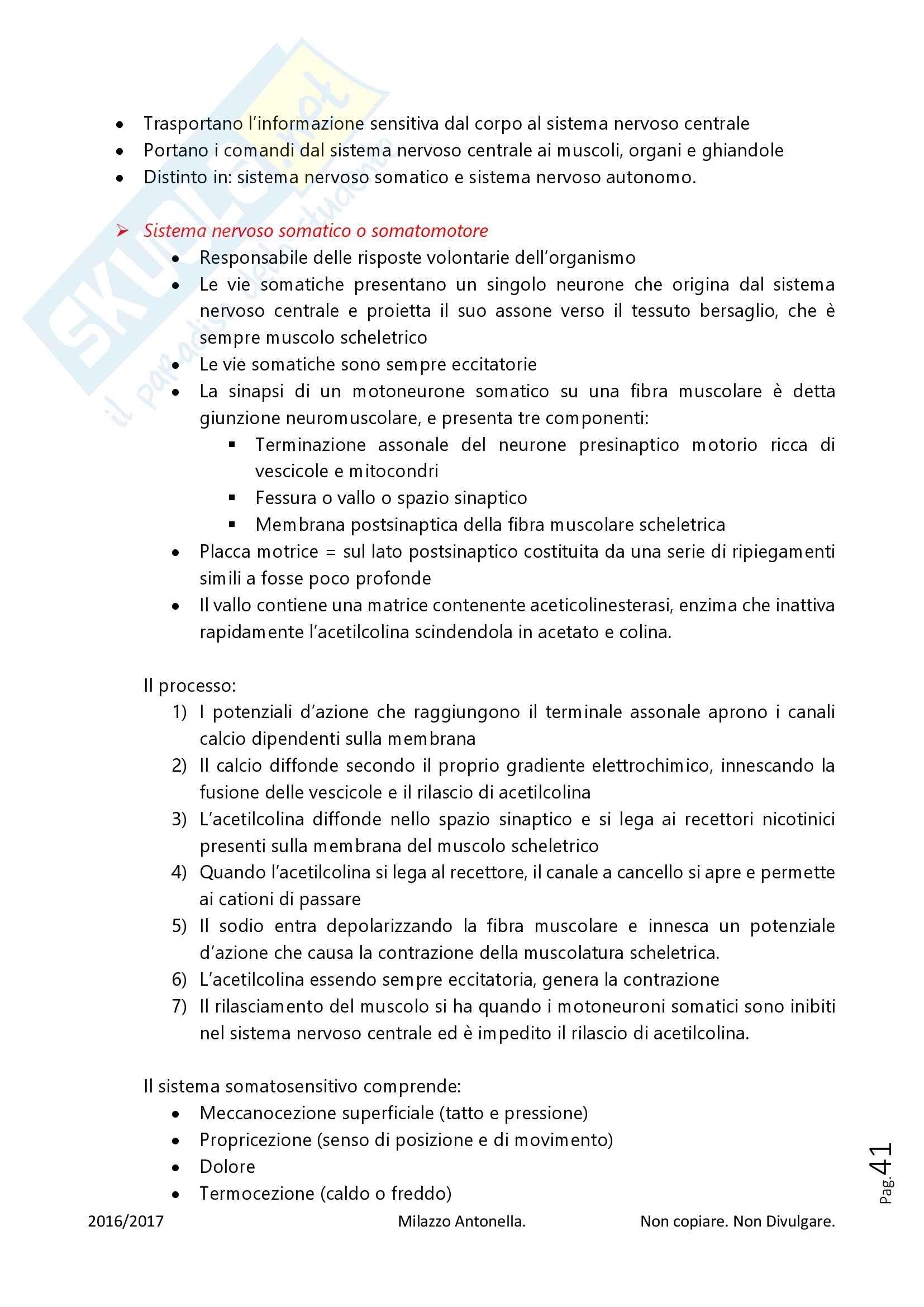 Fisiologia per Infermieristica Pag. 41