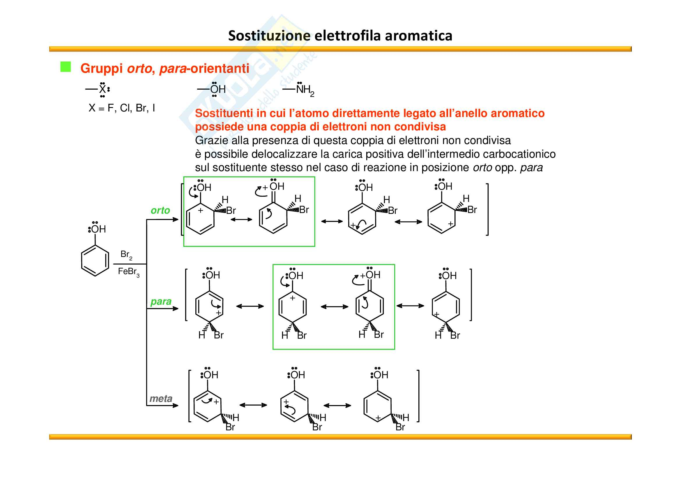 Chimica Organica: Composti aromatici Pag. 51