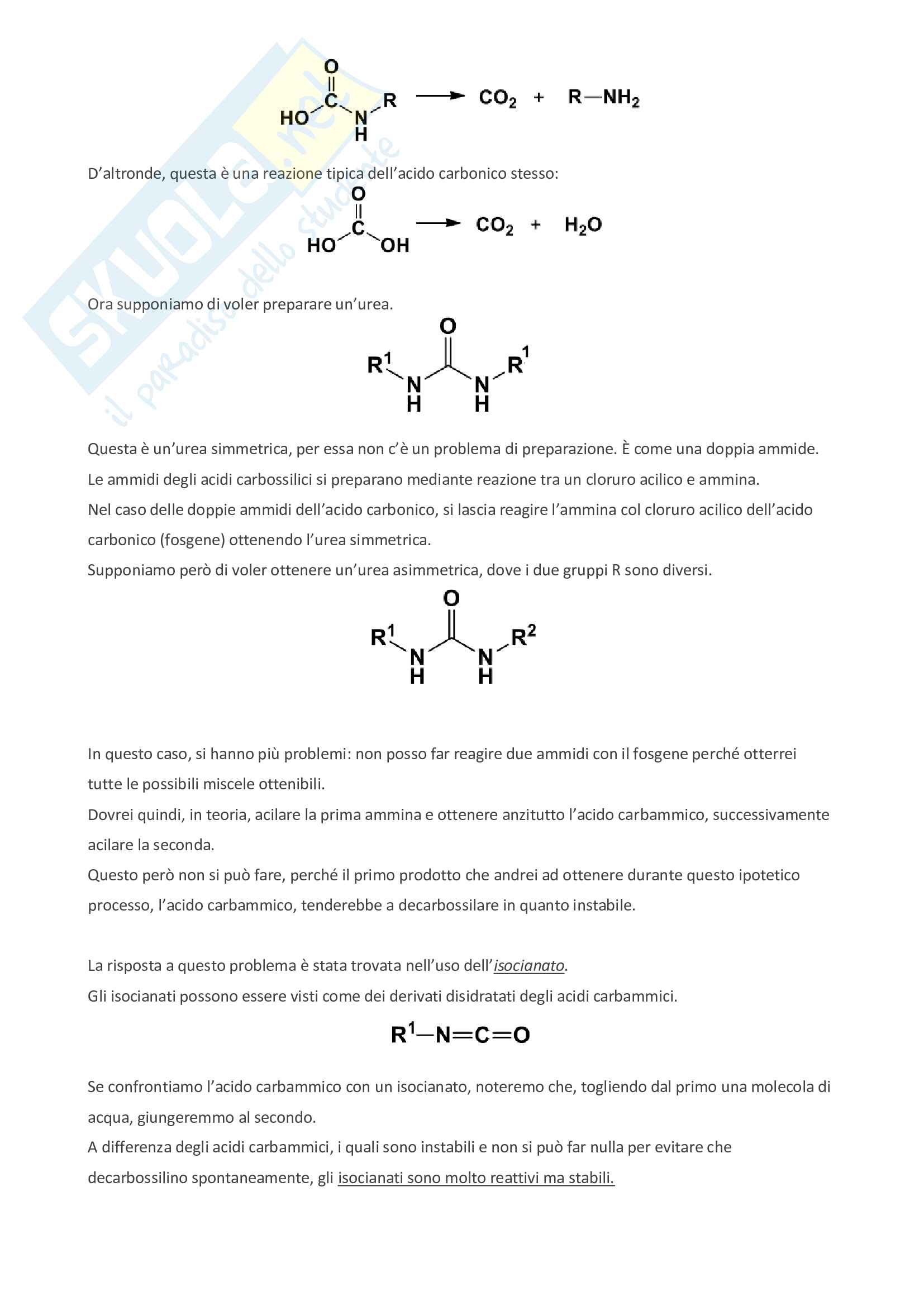 Appunti di bioorganica Pag. 16