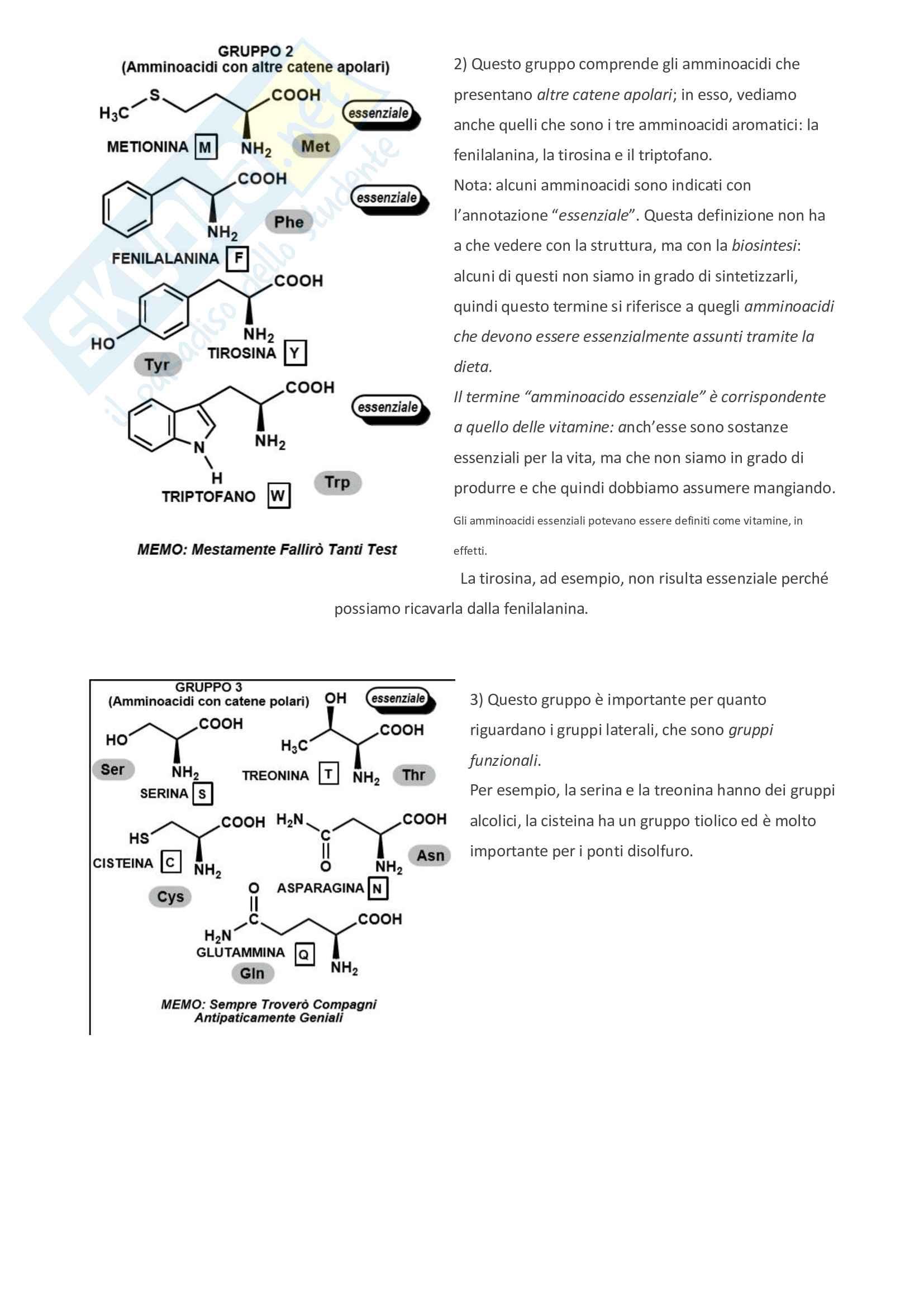 Appunti di bioorganica Pag. 2